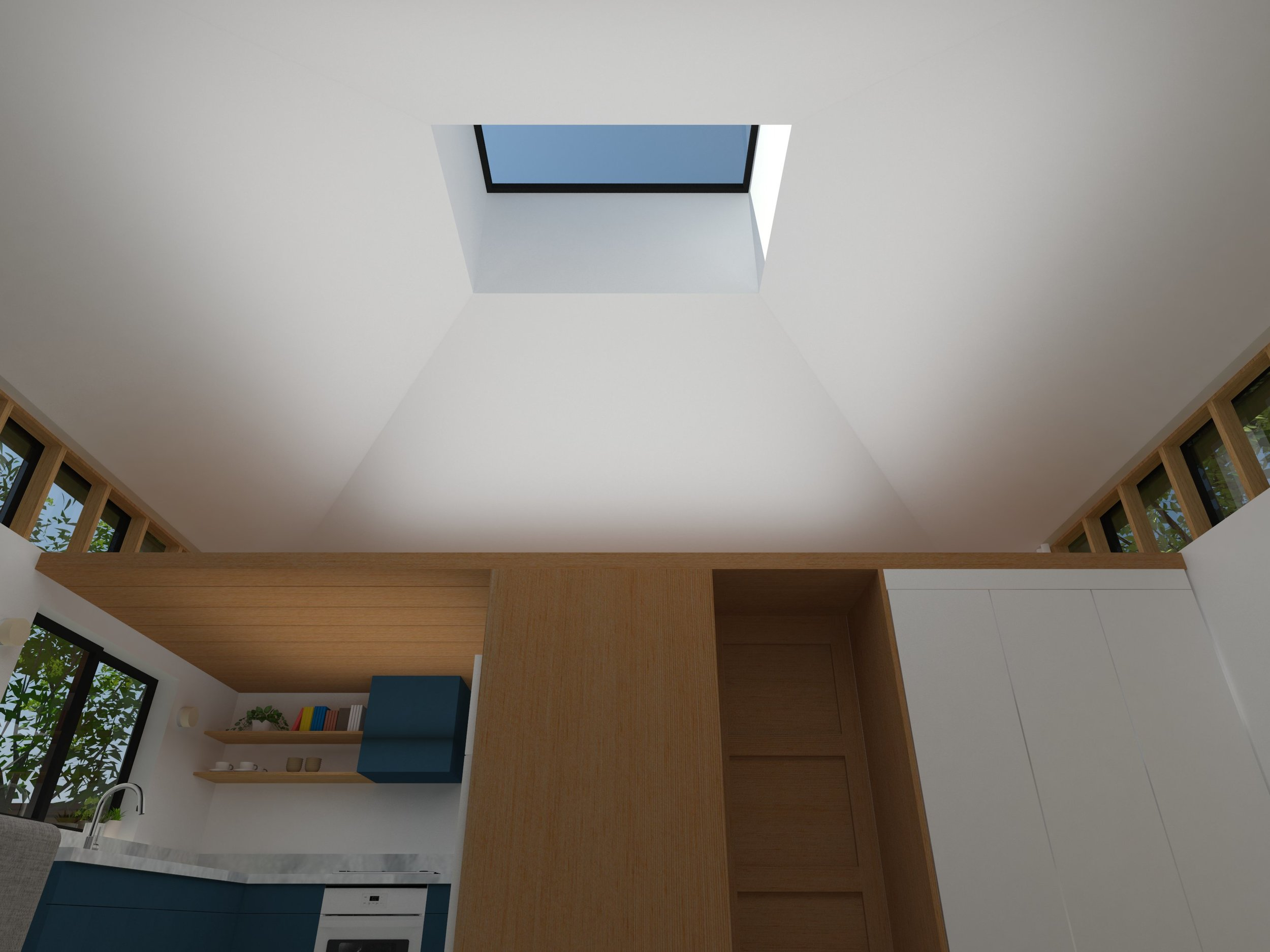 GARAGE-ADU_skylight.jpg
