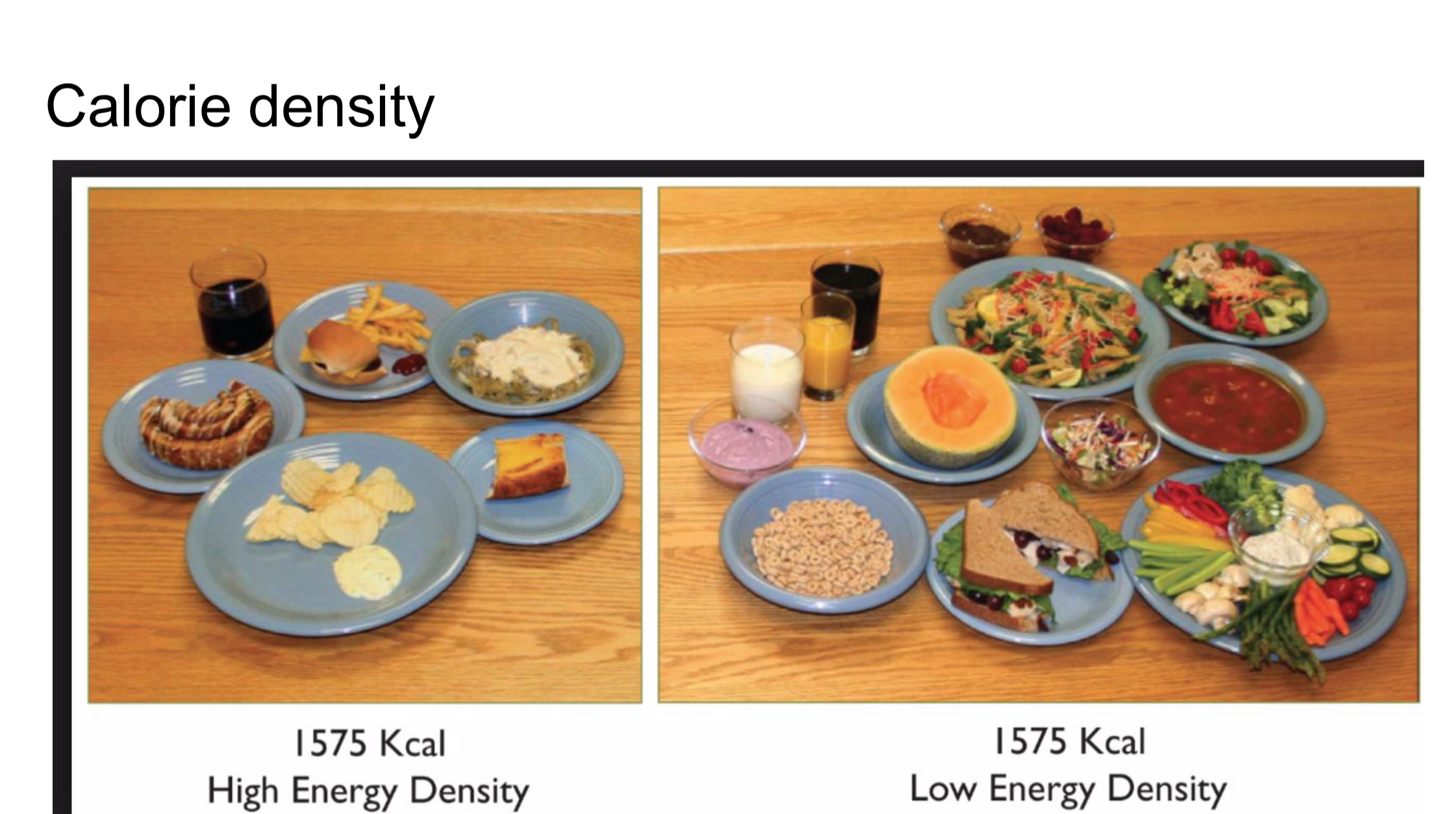 As you can see here, the caloric density choices can drastically change to amount of food that can be eaten in one day for the same amount of calories.
