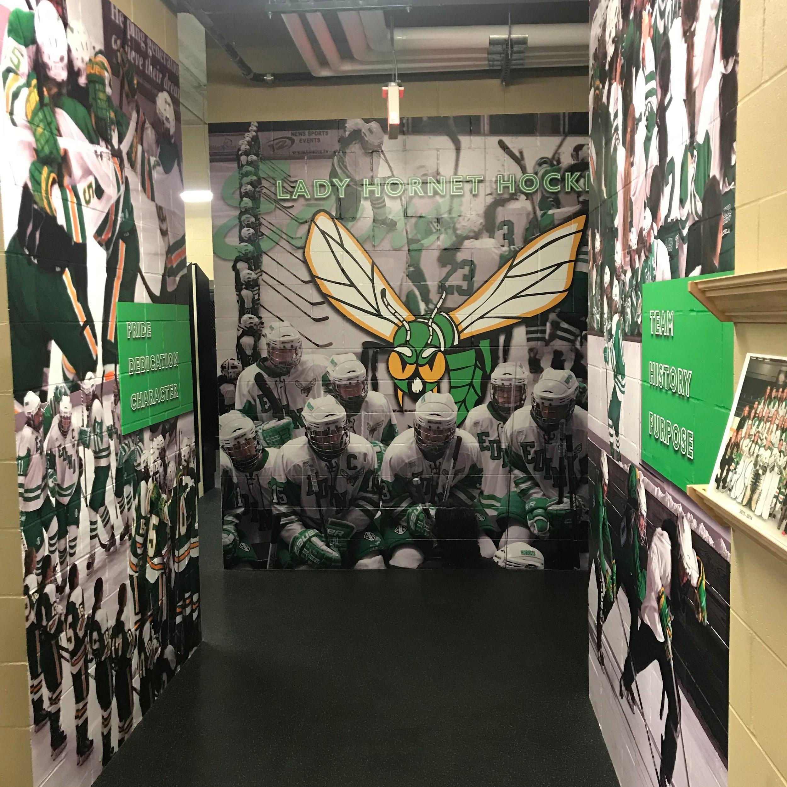 Edina High School Hockey Facilities at Braemar Arena   Edina, MN