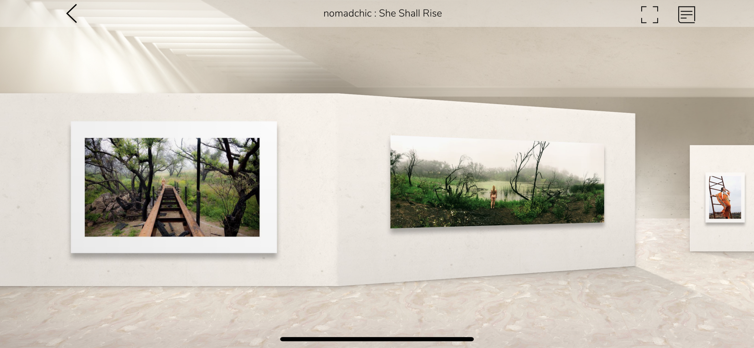 Download the free app D EmptySapce to create and visit virtual art galleries.
