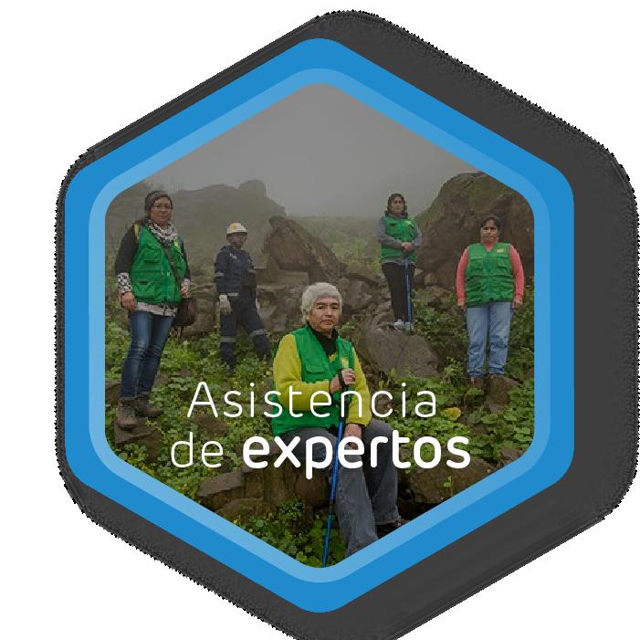 Afinación - Feedback de expertos en emociones, emprendimiento y conservación.