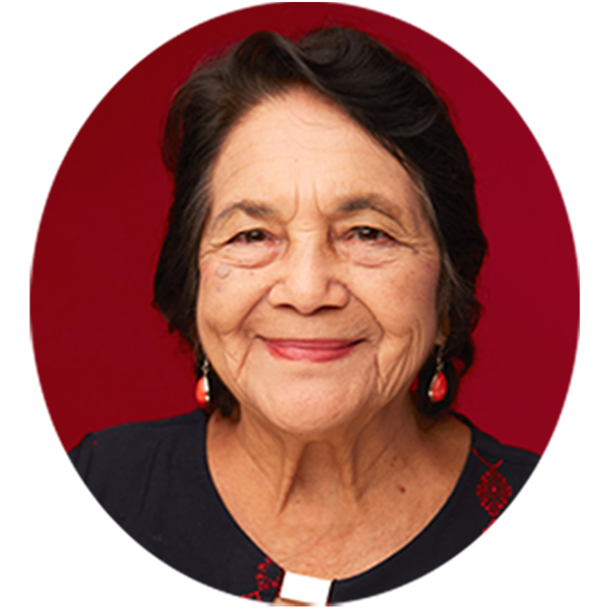 DOLORES HUERTA  LABOR LEADER. CIVIL RIGHTS ACTIVIST.  DOLORES HUERTA FOUNDATION