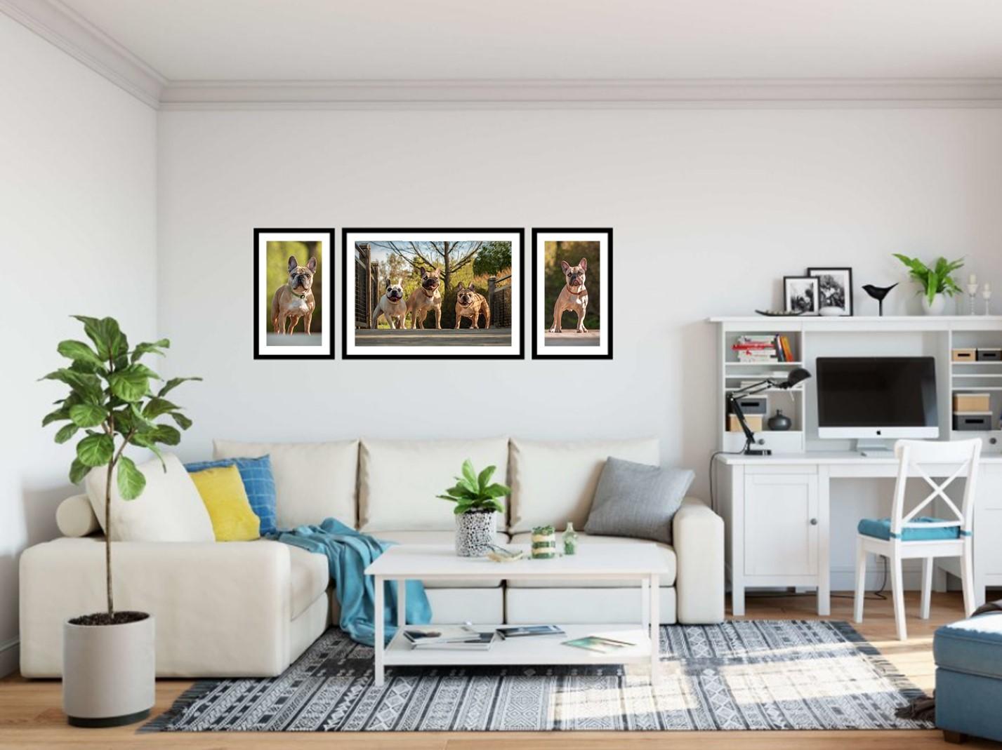 Free Wall Gallery Designs (PC).jpg
