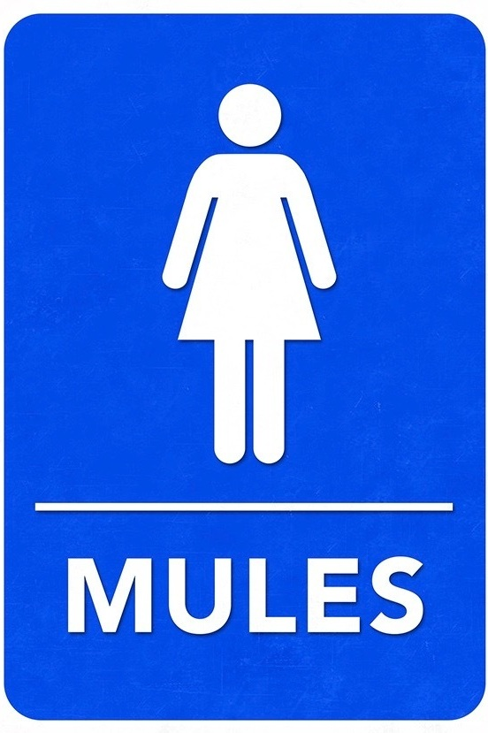 Mules_Logo.jpg