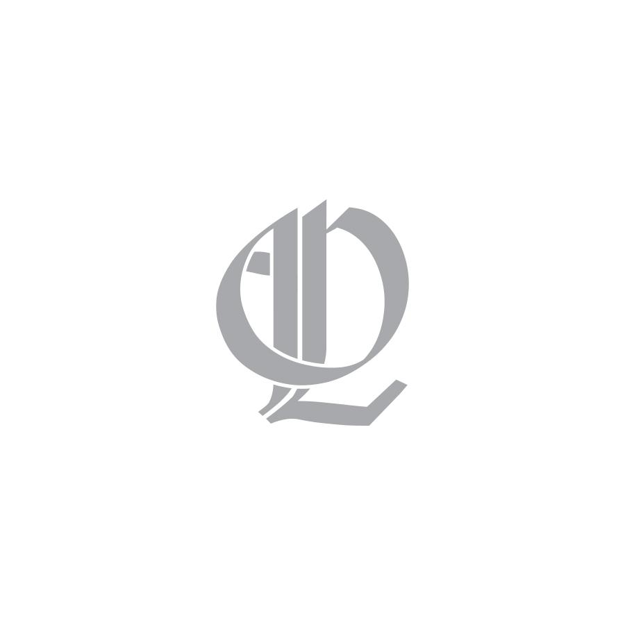 Houston-Logo-Design-Agency-9.jpg