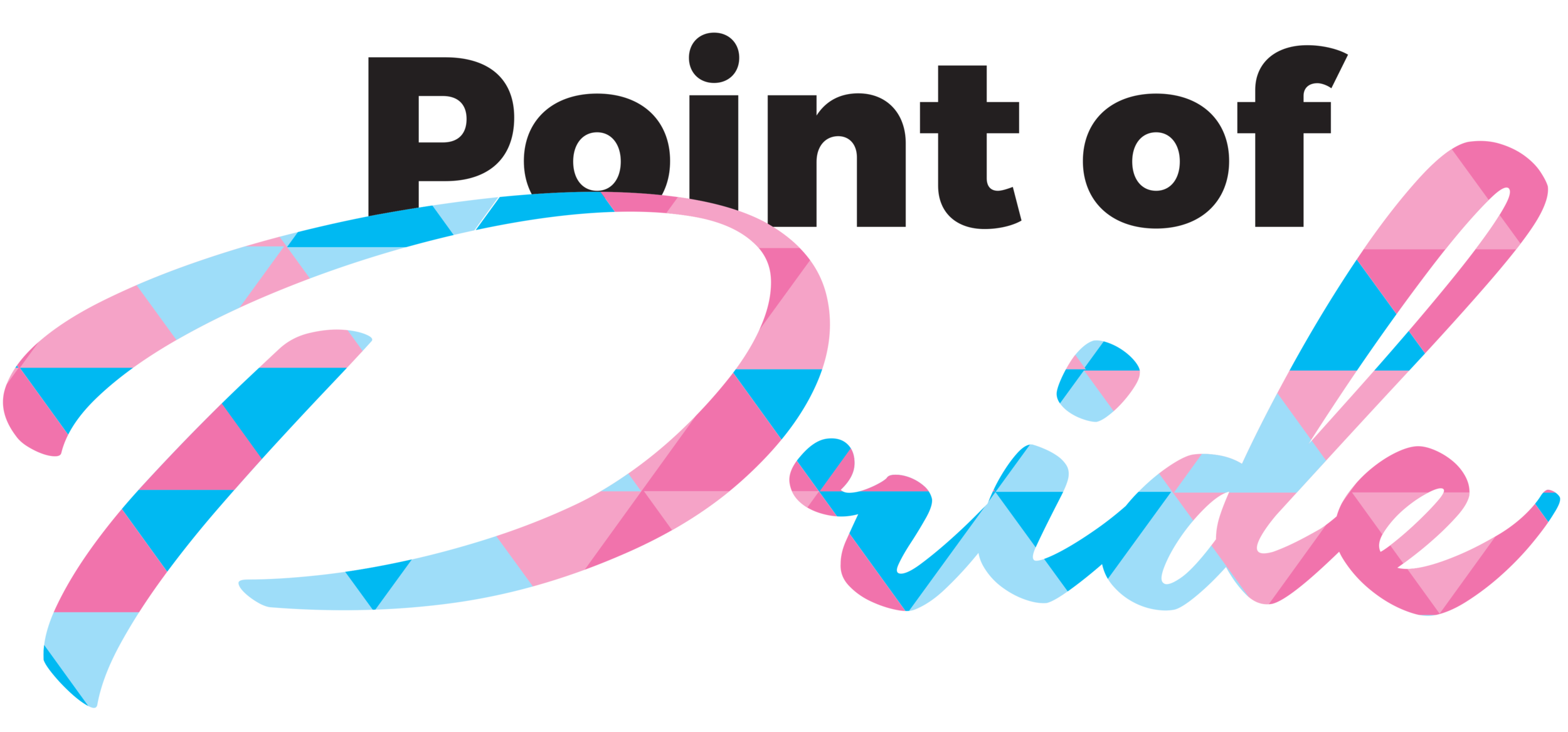Point of Pride Logo.png