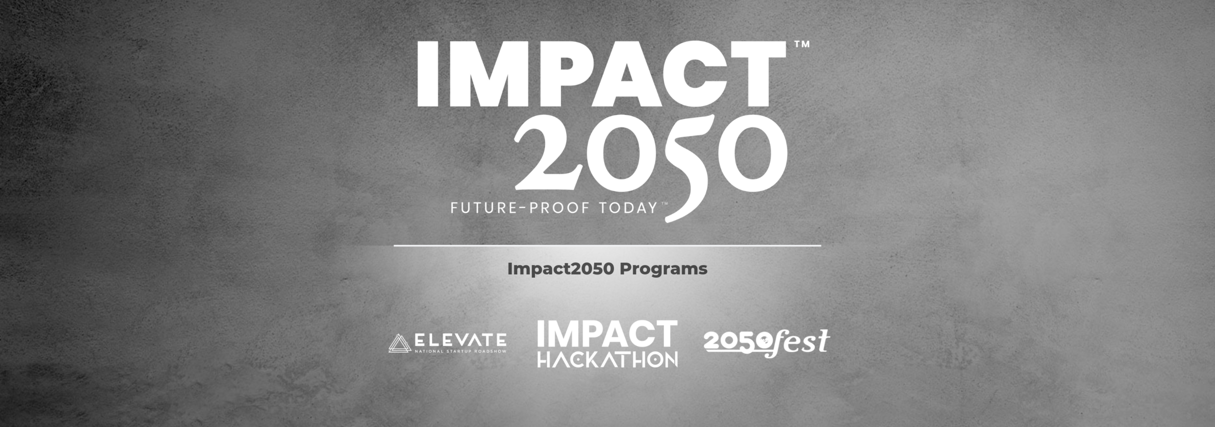 Impact 2050 Programs Explanation-7.png