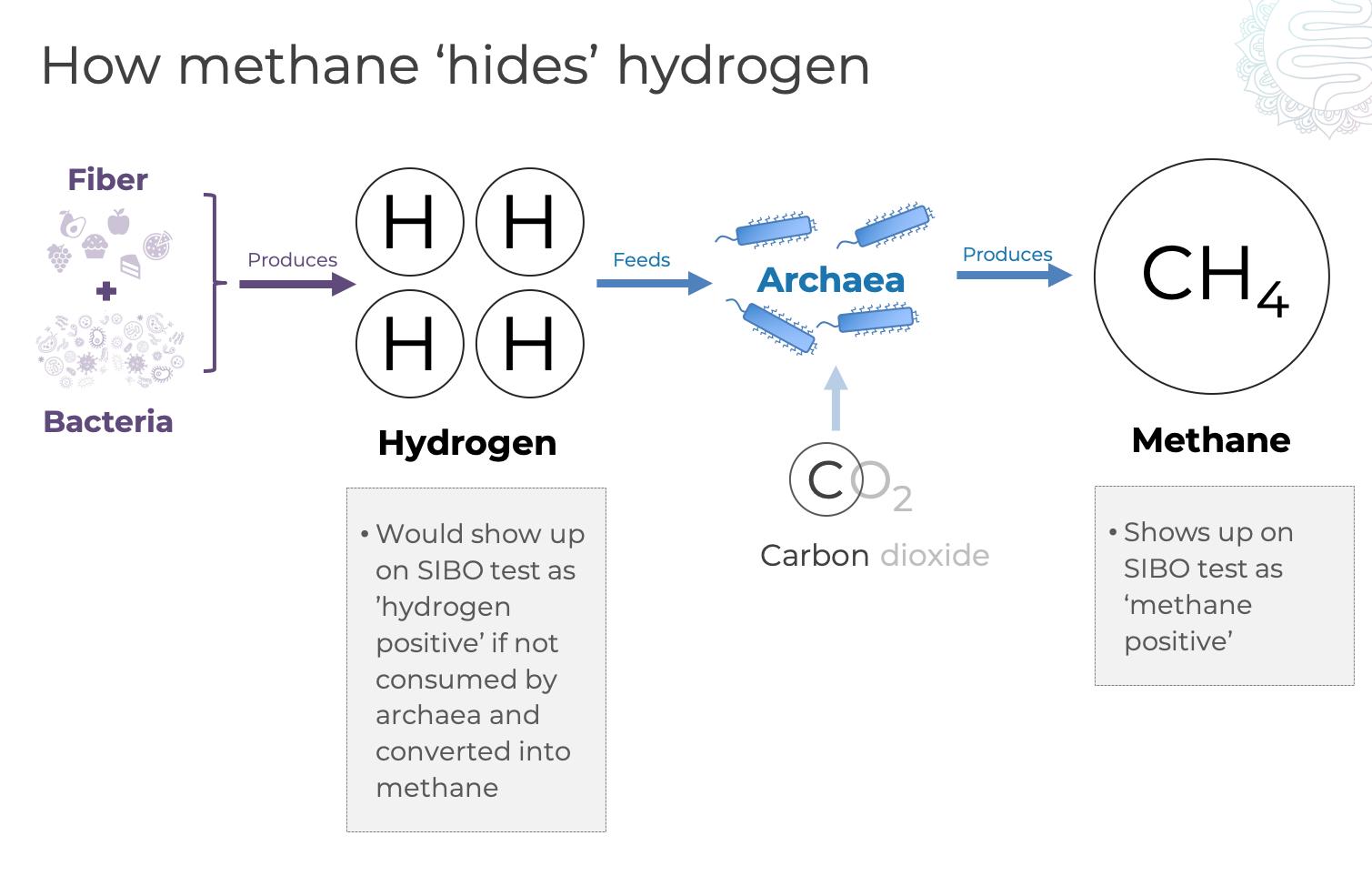 SIBO hydrogen hides methane