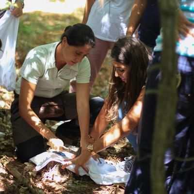 Art Based Environmental Education -