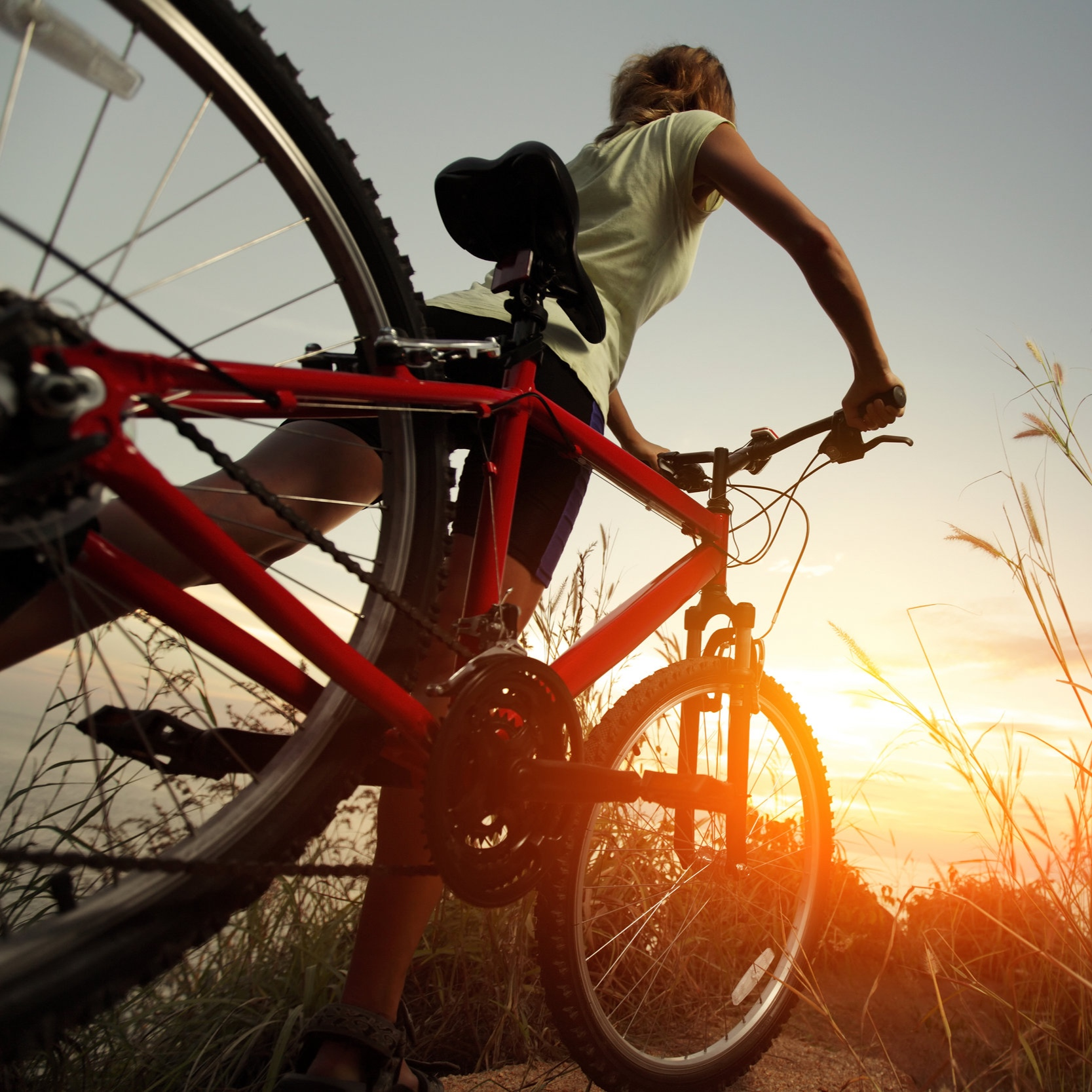 Cycling Tours - Our cycling holidays can be tailored for all sized groups - families or friends