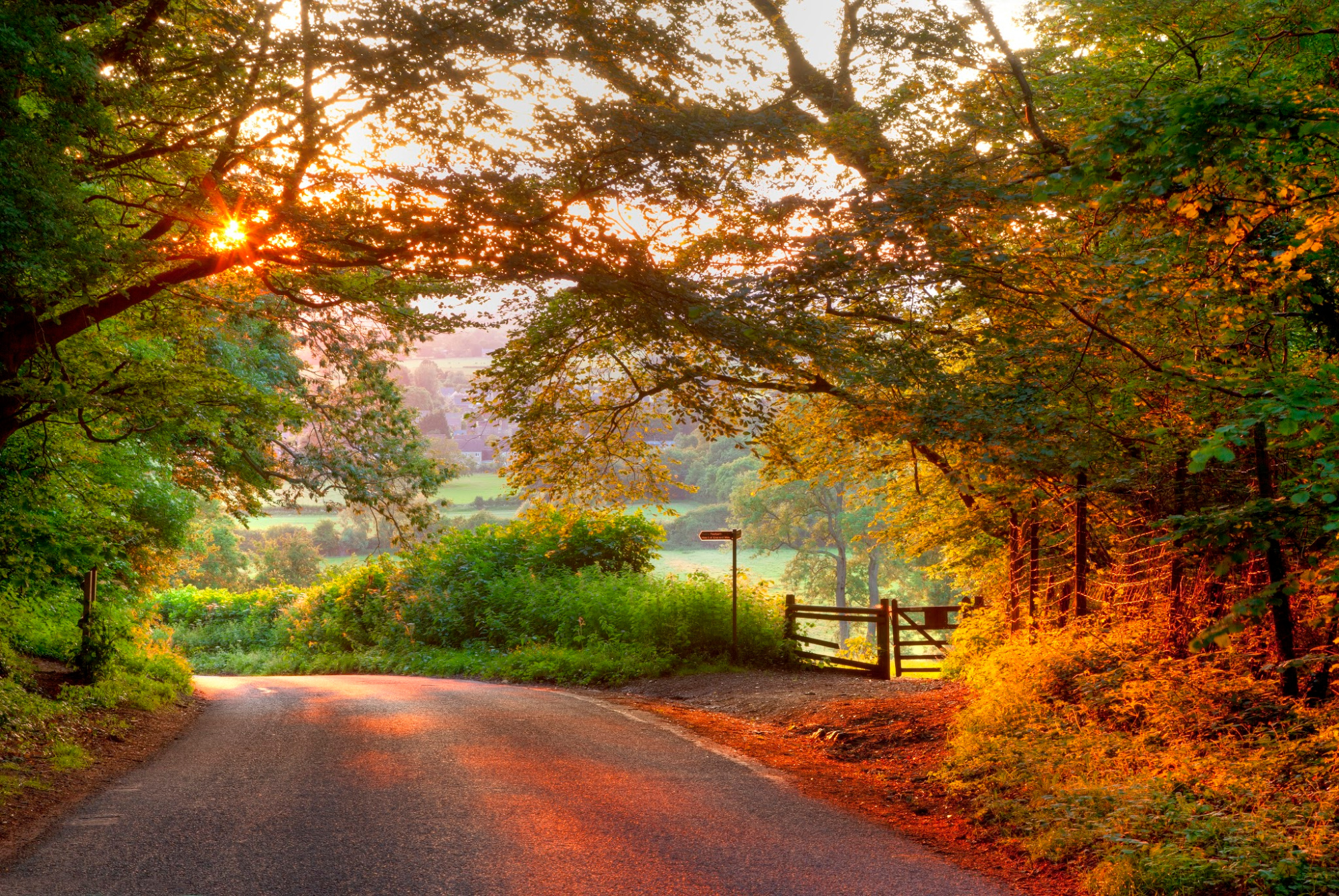 The Cotswolds Highlights Cycling Tour -