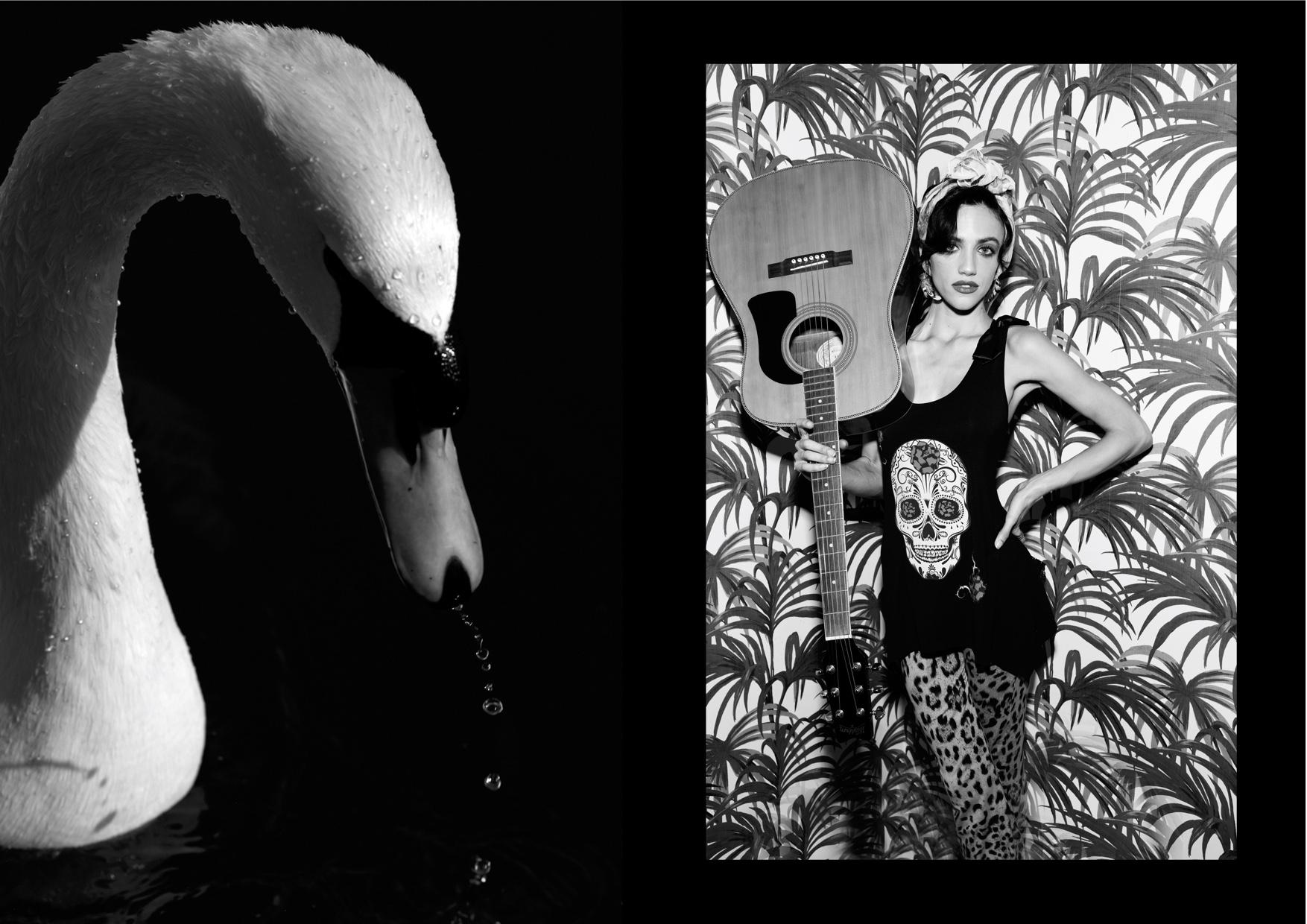 Rock & Roll Swan (dragged) 2.jpg