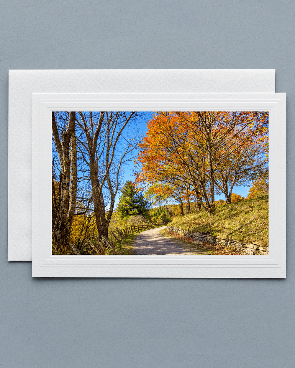 Send a lovely Greeting Card with a real photograph of Moses H Cone Memorial Park - All Greeting Cards are handmade by us in the U.S.A.