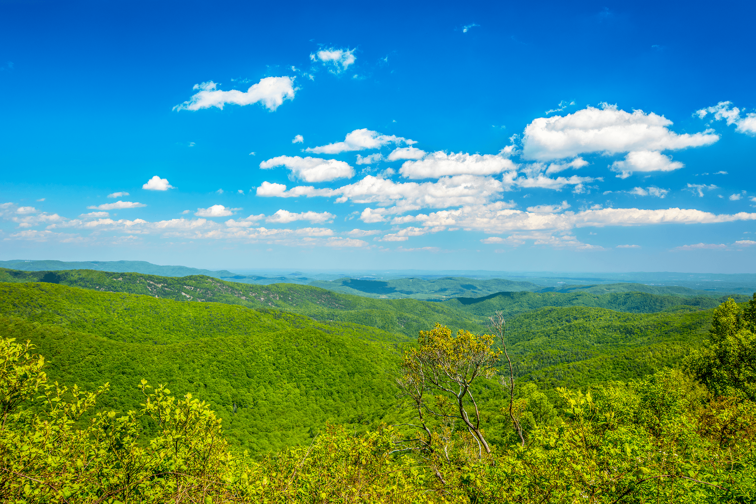 View Bluff Mountain  at Milepost 243.4 on the Blue Ridge Parkway offers beautiful vistas overlooking Doughton Park. It also provides hikers access to the easy 7.5-mile (12 km)  Bluff Mountain Trail , which reaches the Brinegar Cabin after 4.7 miles (7.6 km).