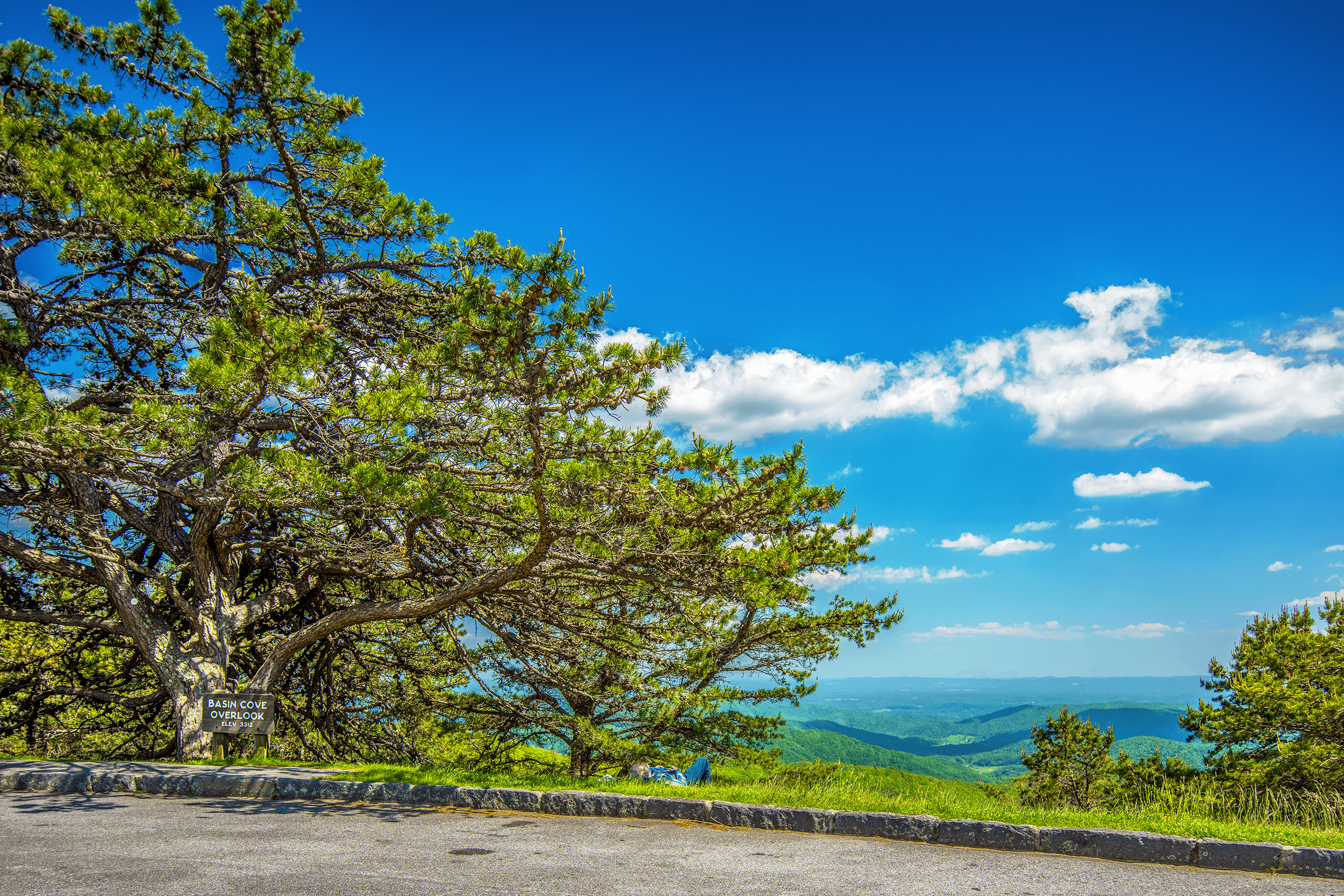The  Basin Cove Overlook  at Milepost 244.7 on the Blue Ridge Parkway is a picturesque spot with long-range views and a big old photogenic pine tree. The southeast facing overlook is situated at an elevation of 3,312 feet (1,009 meters). Two hiking trails, the  Bluff Mountain Trail  and the  Flat Rock Ridge Trail , start from the overlook.