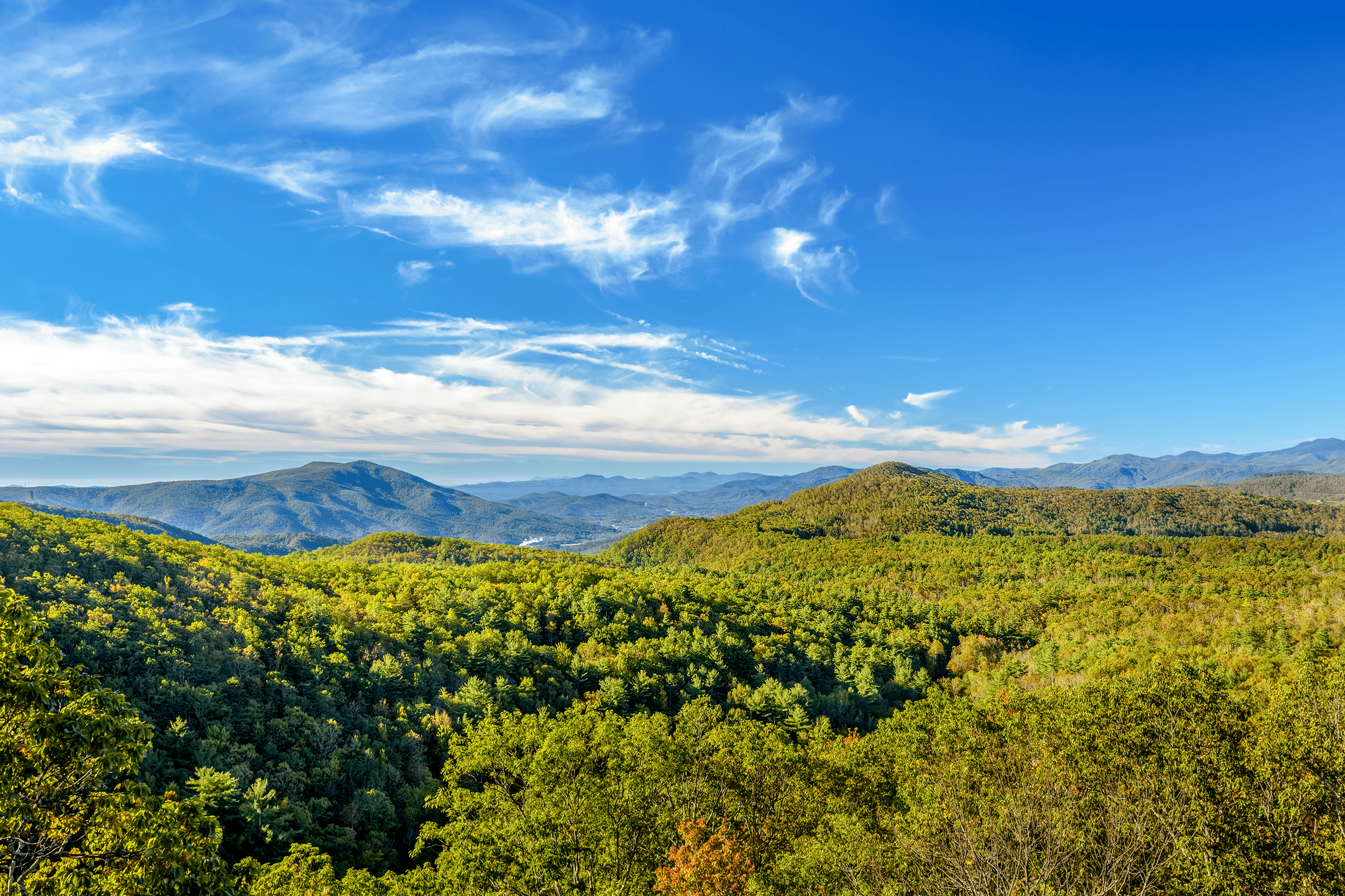 Bear Den Overlook : On the left of the panorama is  Dobson Knob  (3,694 feet - 1,126 meters). The historic  Overmountain Victory Trail  runs to the east of  Dobson Knob . The  Overmountain Men  took this trail during the  American Revolutionary War  (1775-1783) to face the advancing British troops. In the  Battle of Kings Mountain  on October 7, 1780, the British suffered a surprising defeat, which probably played a large part in the outcome of the war.