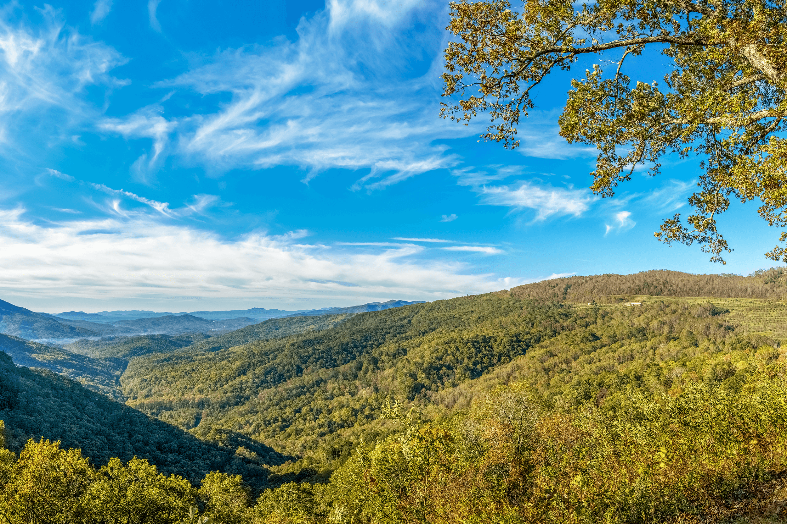 From an elevation of 2,815 feet (858 meters), the  North Cove Overlook  offers long-range views down  Pepper Creek Valley . The view is towards North Cove NC, which lies 3 miles (5 km) away, and for which the overlook was named. The  North Cove Overlook  is situated above a challenging 13-mile (21-km) railroad section that connects Spruce Pine NC with Marion NC through multiple loops and 18 railroad tunnels.