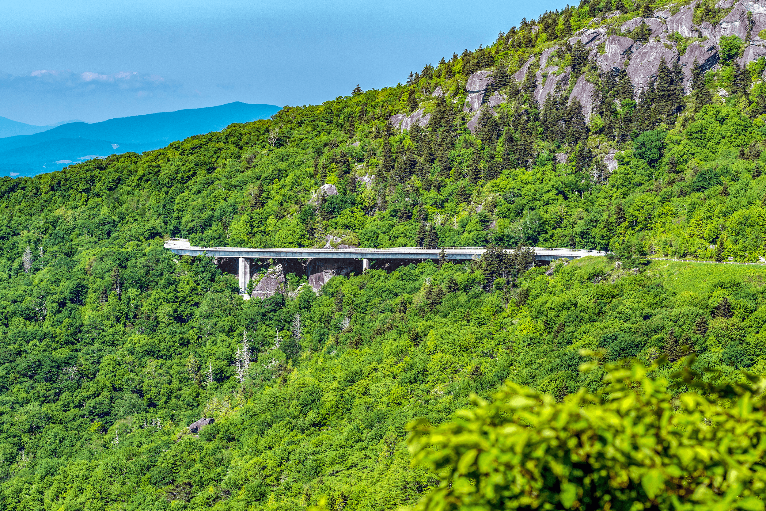 The  Linn Cove Viaduct  was the last unfinished section of the Blue Ridge Parkway. After a delay of 20 years and eight years of construction, it was completed in 1987. It is shaped like a snake following but not touching the slopes of  Grandfather Mountain . The viaduct has won 11 design awards and is one of the most photographed sites along the  Blue Ridge Parkway .
