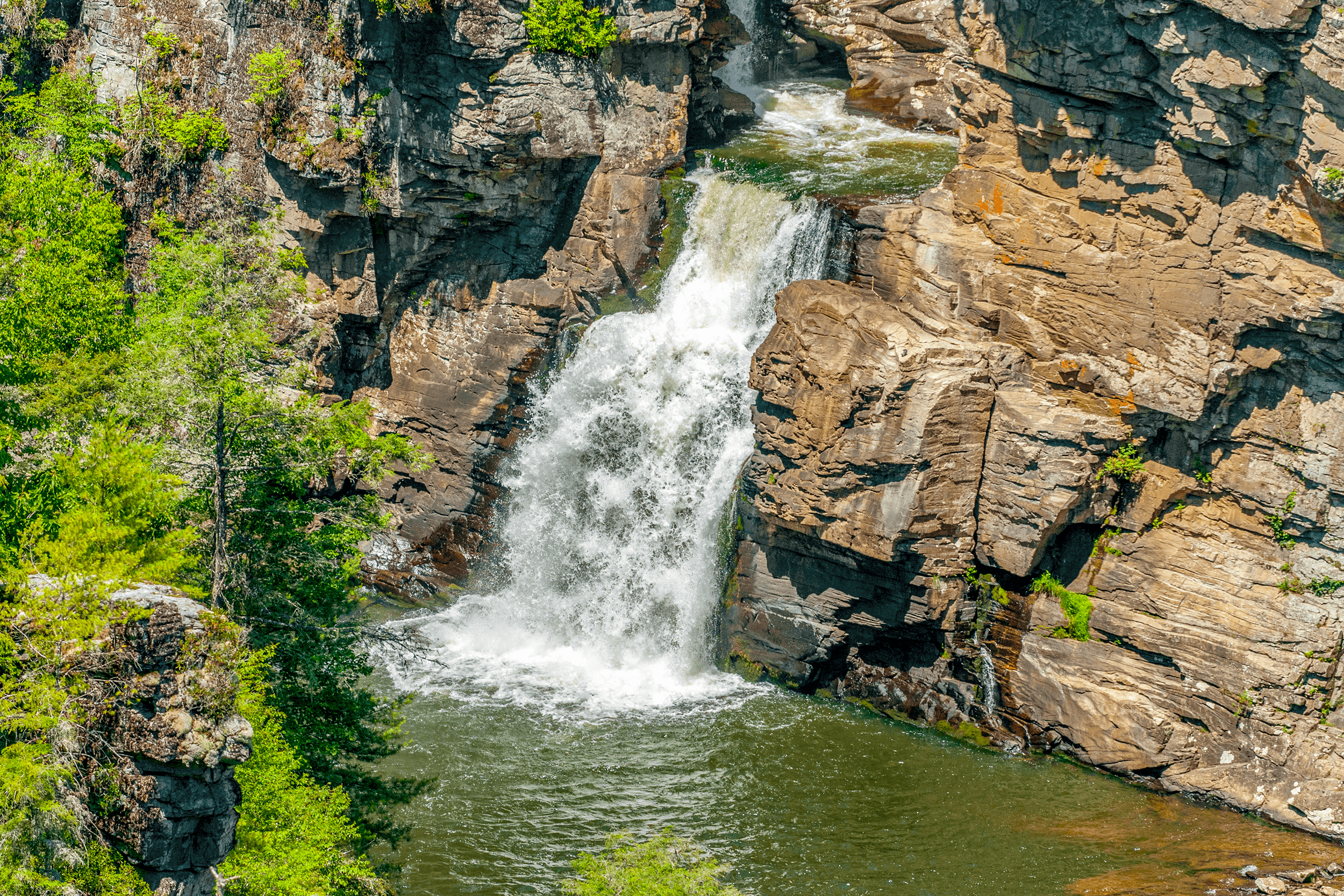 ...plunging 45 feet (14 meters) over the  Lower Falls .