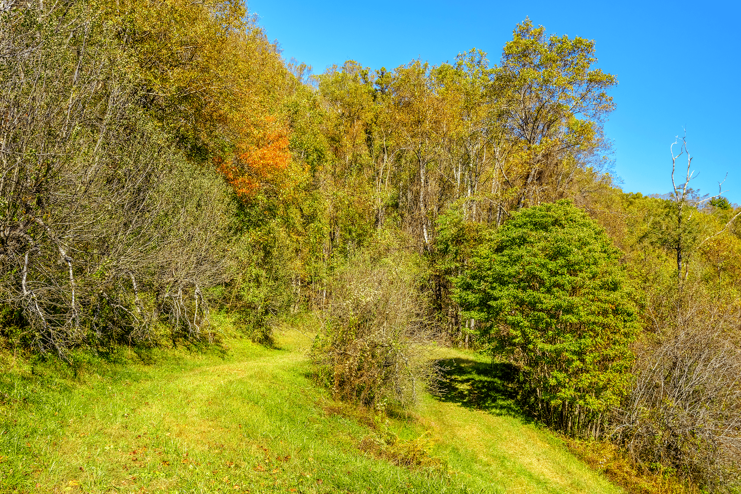 Fall is particularly beautiful for a hike. The mornings are crisp but during the day it is still warm.