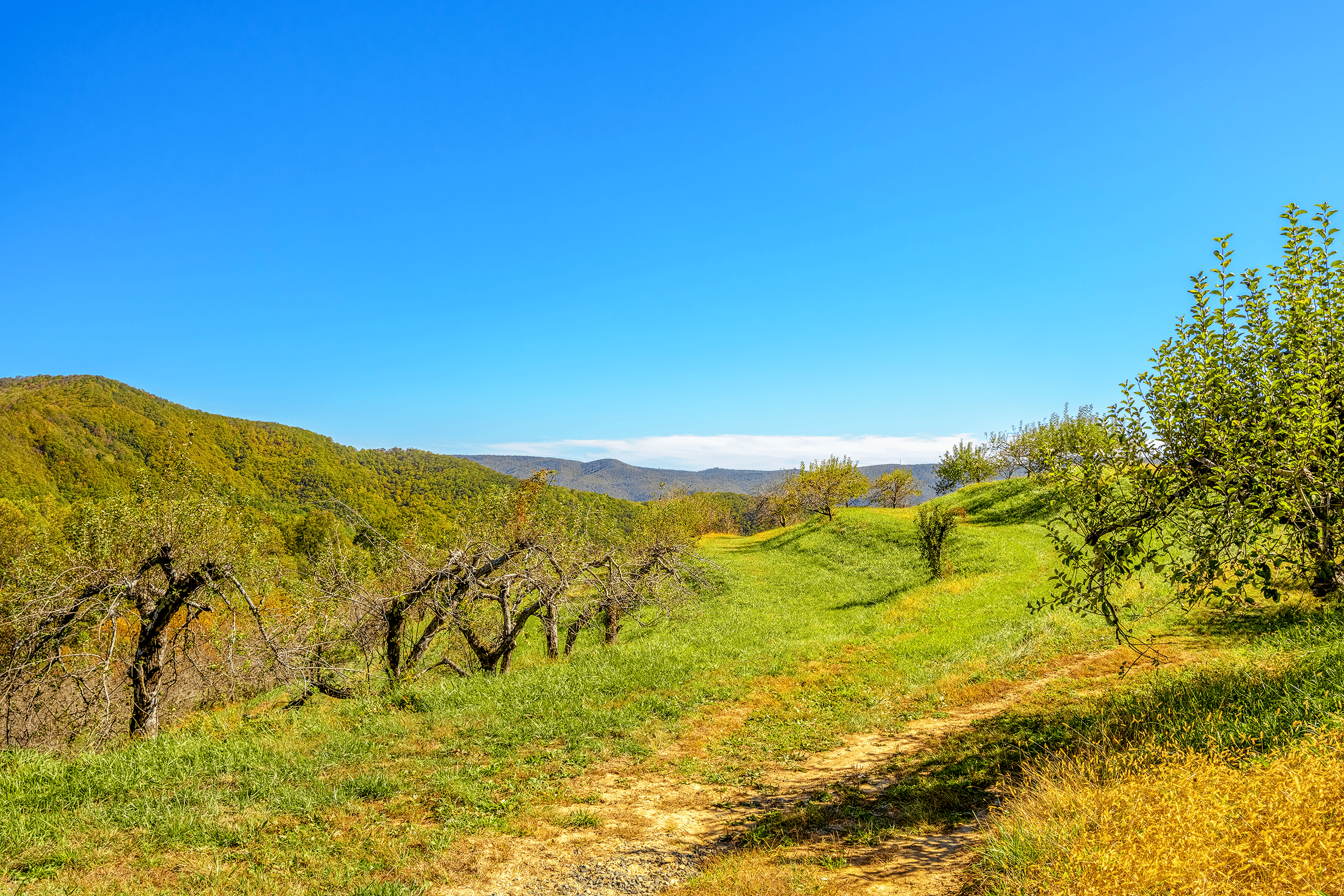 After hiking uphill from  The Woods , the second scenic lookout point rewards you with another picturesque view.