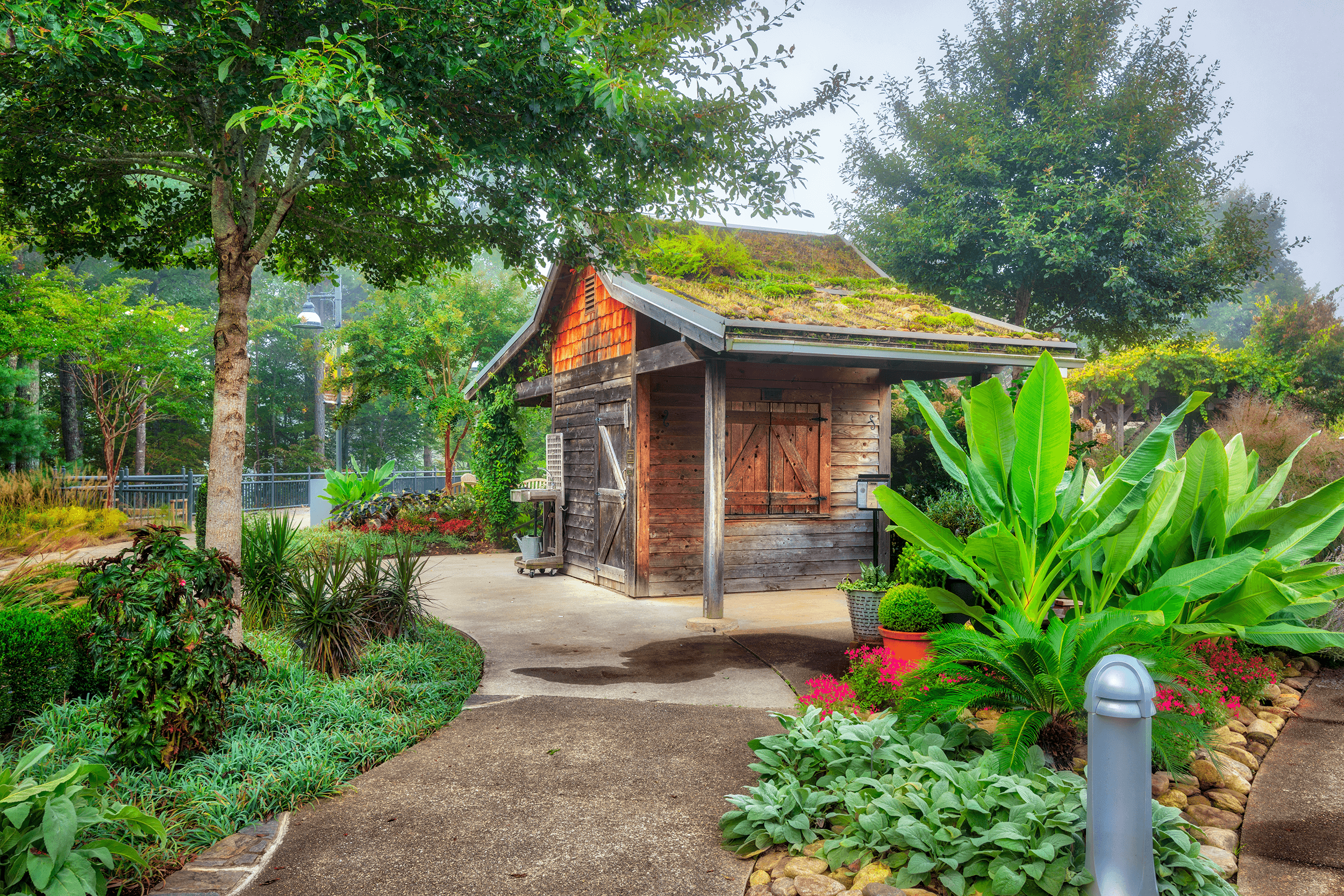 The rising sun on a foggy morning can immerse the gardens in a mystical light. The  Gardener's Green Shed  with its moss green roof is located by the  Baker Landscape  garden area.