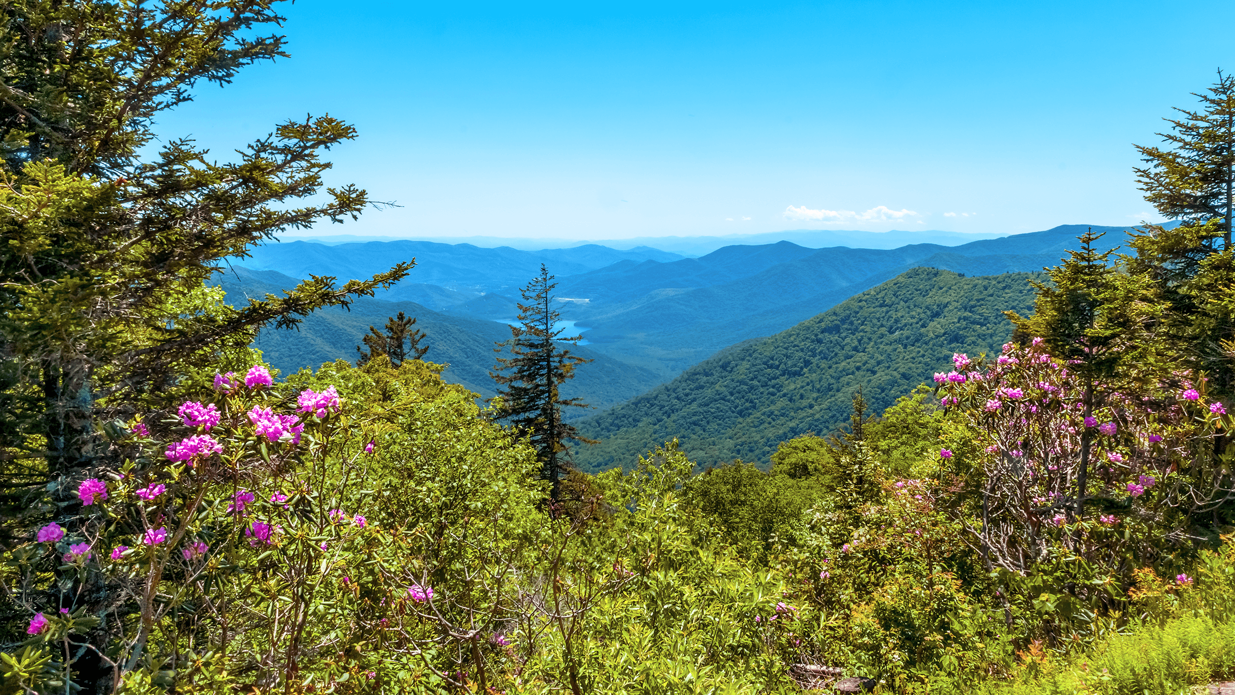 Blue Ridge Mountains -