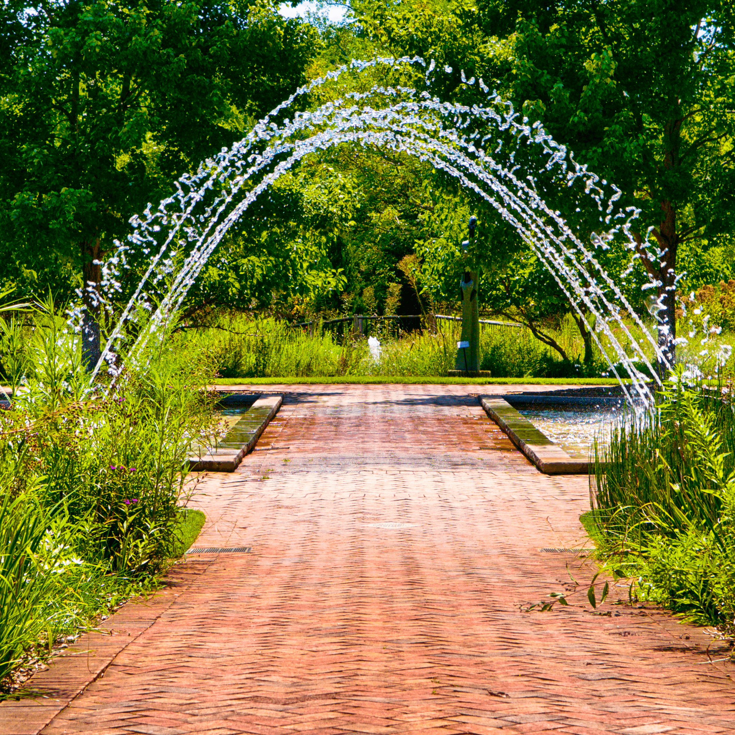 """The  Home and Garden Television (HGTV)  named the Garden one of the nation's """"20 Great Gardens"""". There are so many things to do and to see for everybody. Nature lovers, photographers, kids will enjoy the time there.  Some visitors take a chance and go underneath this unusual fountain over-arching  Magnolia Allée . But be careful, you might get wet."""