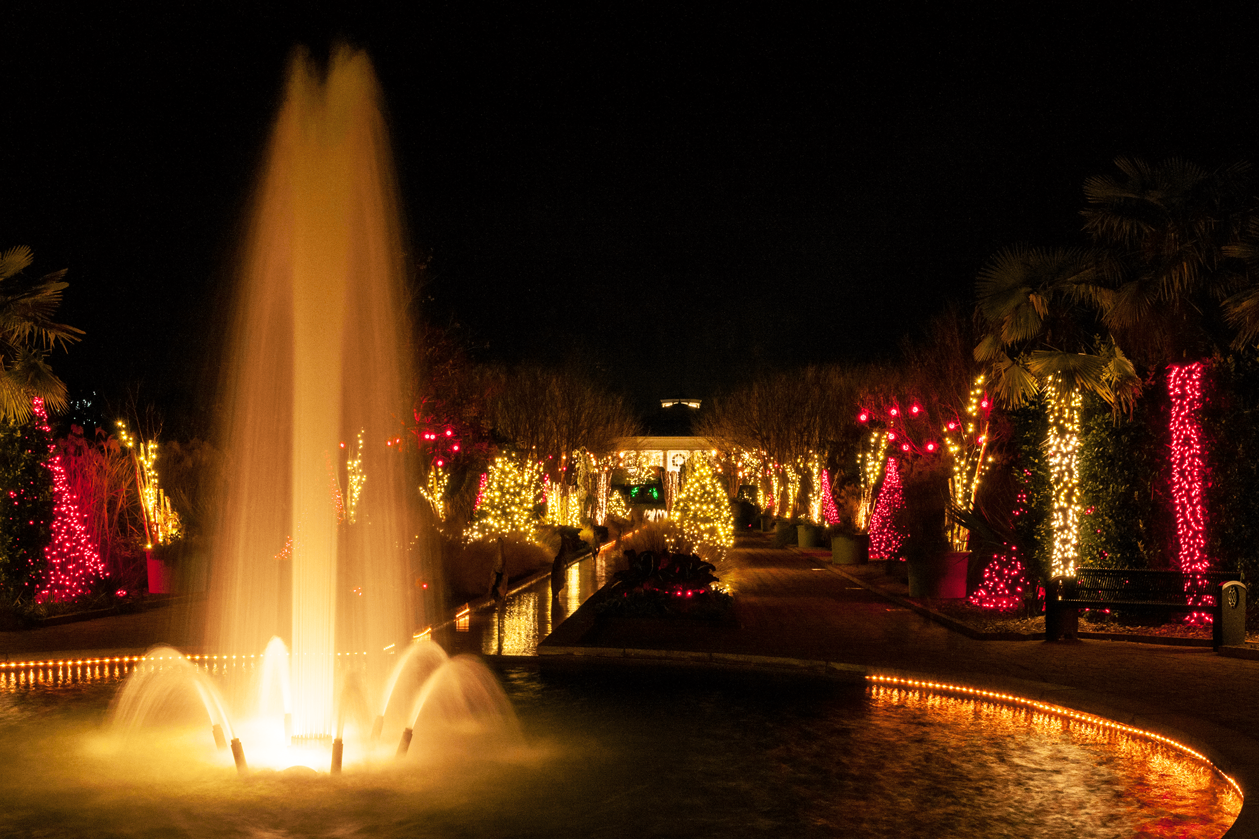 The Garden is a fantastic destination in spring, summer, and fall but it turns spectacular during the annual Holidays at the Garden event between Thanksgiving and Christmas. The Garden is then tastefully lit - a true festival of lights. Holiday tunes play in the background. When you get a little cold, well, will a cup of hot chocolate warm you up?