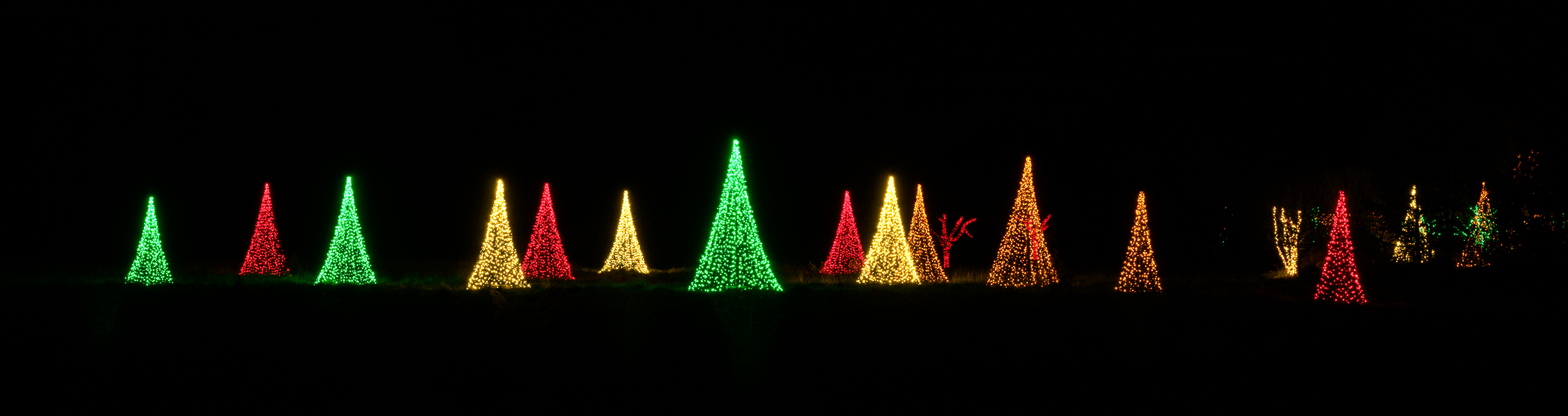 The choreography of lights at the  Holidays at the Garden  has been skillfully and artfully done giving visitors something new to see at every turn.