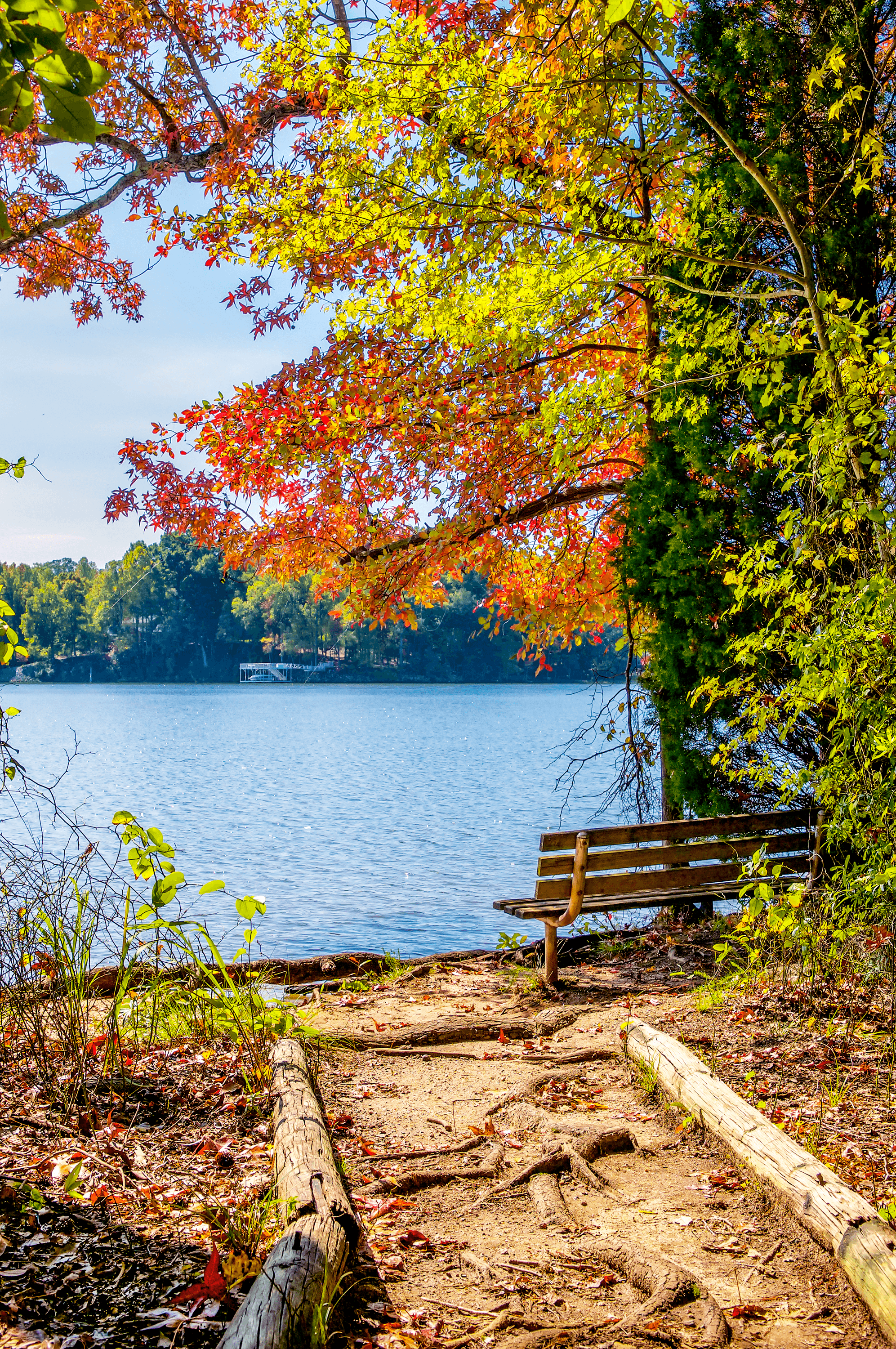 Covering an area of over 1,343 acres,  Latta Plantation Nature Preserve  is Mecklenburg County's largest nature preserve. Along the  Cattail Trail  (an easy 0.5-mile loop) you can rest on one of the shaded benches and enjoy the spectacular views of  Mountain Island Lake .