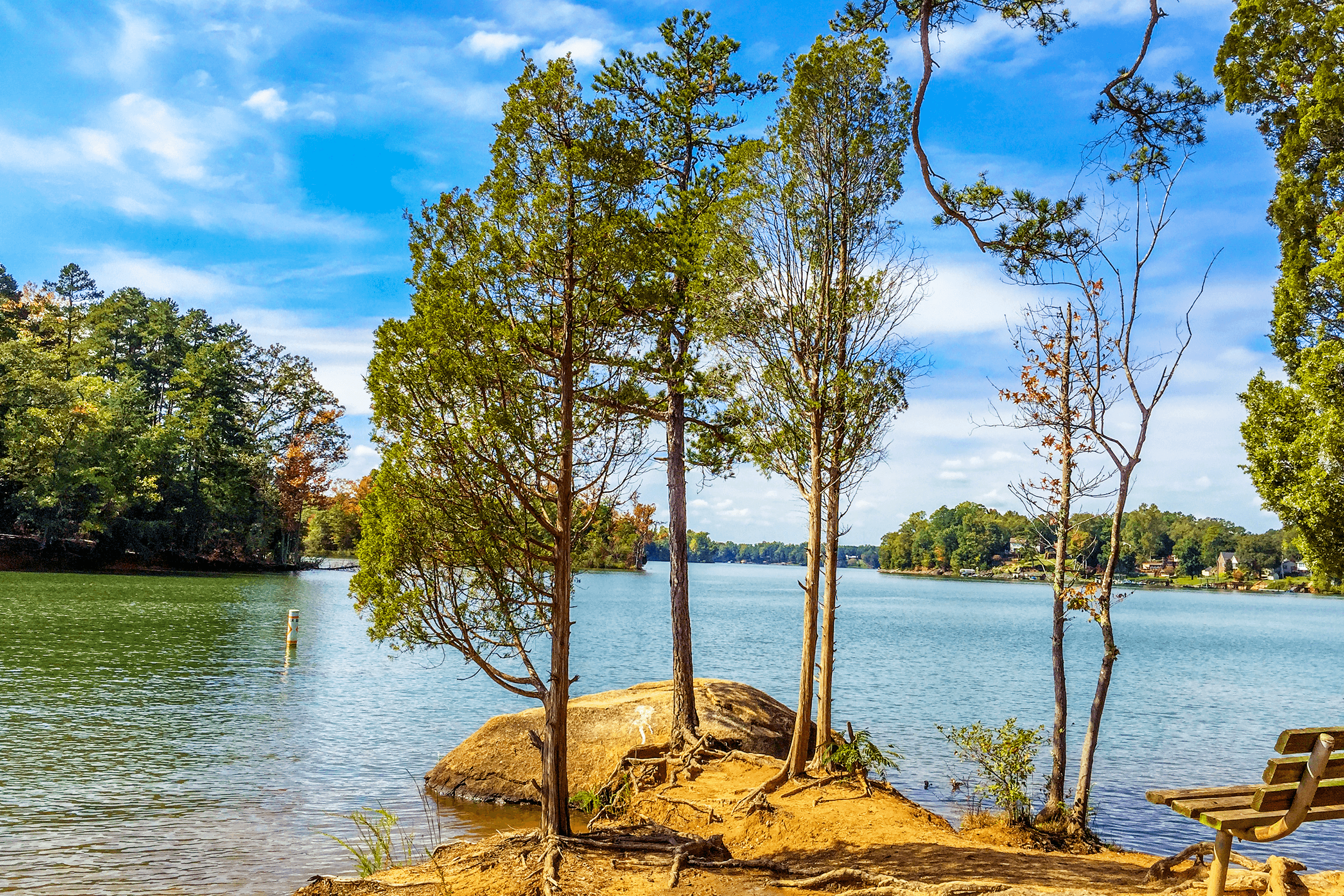 This beautiful view is from the most western point along  Cattail Trail . Have a seat on the bench or the rocks at the edge of the lake before heading on to the second half of the trail.