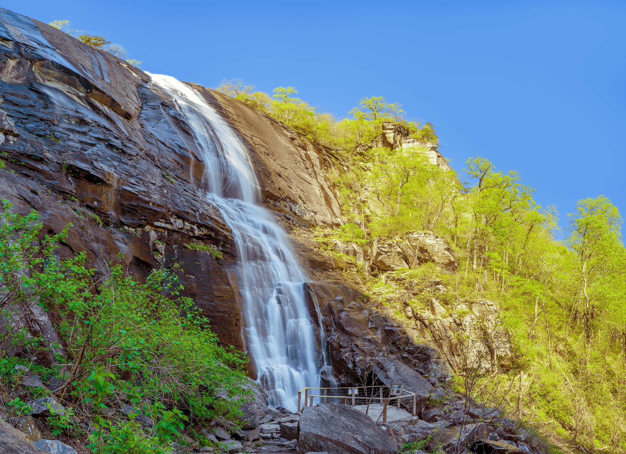 Flanked by towering cliffs to the left, the trail opens up a bit giving view to  Hickory Nut Falls .