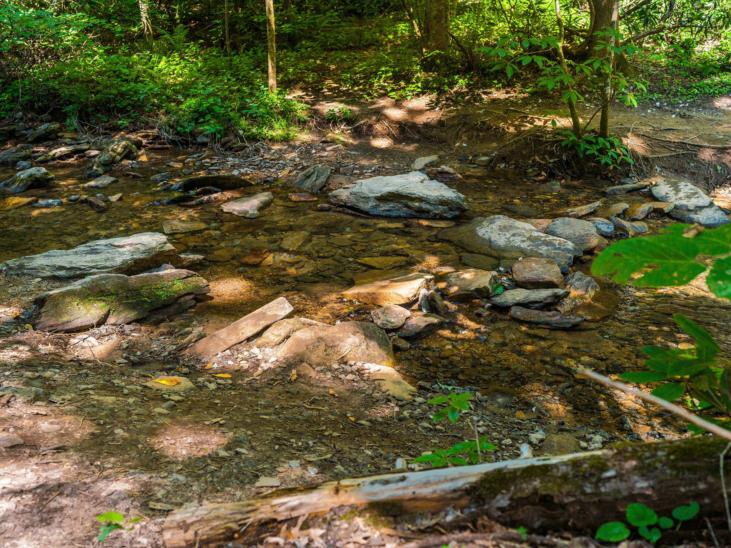 The  Exclamation Point Trail  connects to the  Skyline Trail  at Exclamation Point. The moderate-to-strenuous  Skyline Trail  meanders through the forest on its way to the  Upper Hickory Nut Falls . After 1 mile you reach  Falls Creek , which you need to cross to get to the viewing platform of  Upper Hickory Nut Falls .