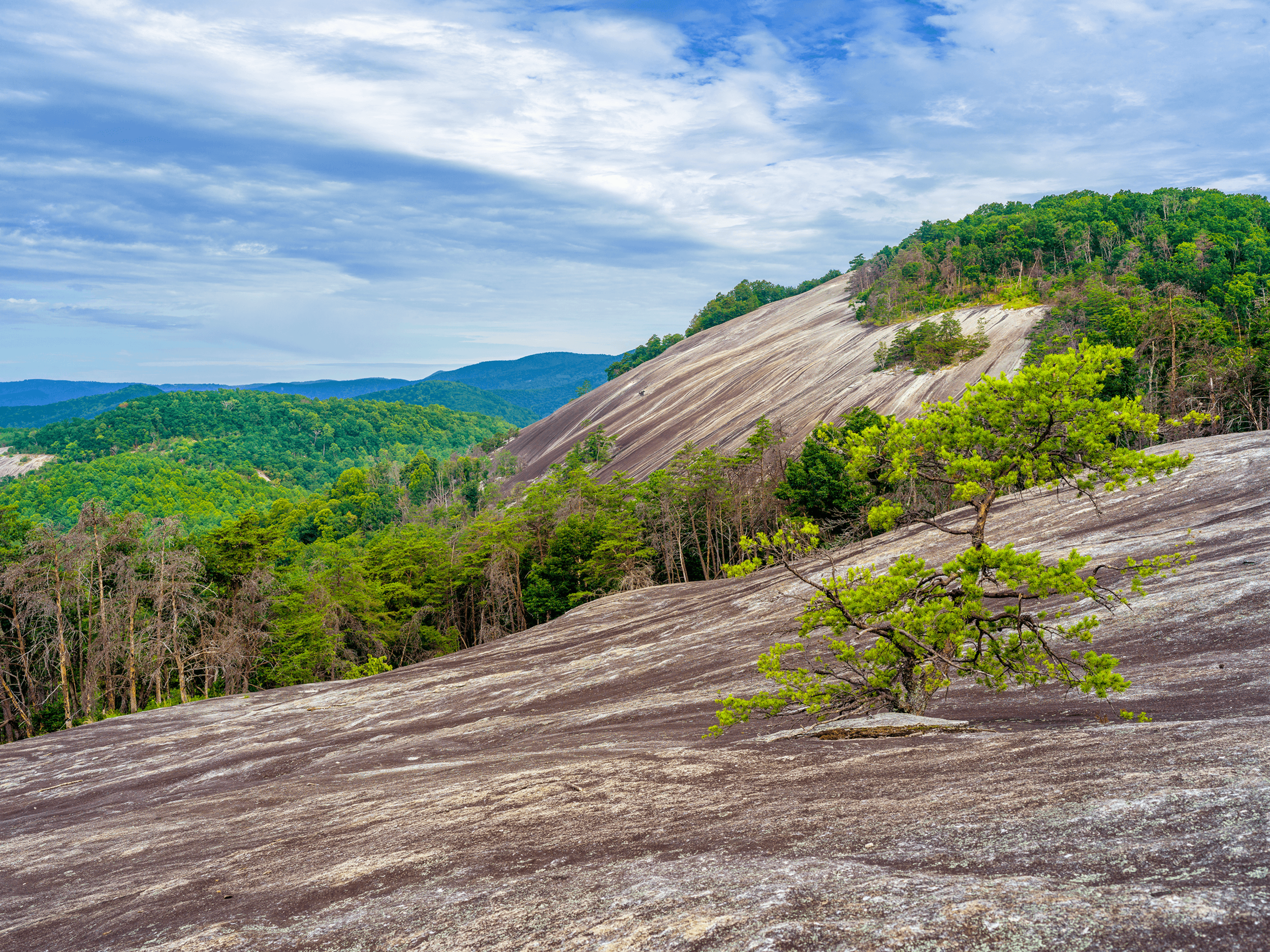 Here is a view of the 600-foot granite dome. The surface is very smooth, polished from 400 million years of rain and wind.