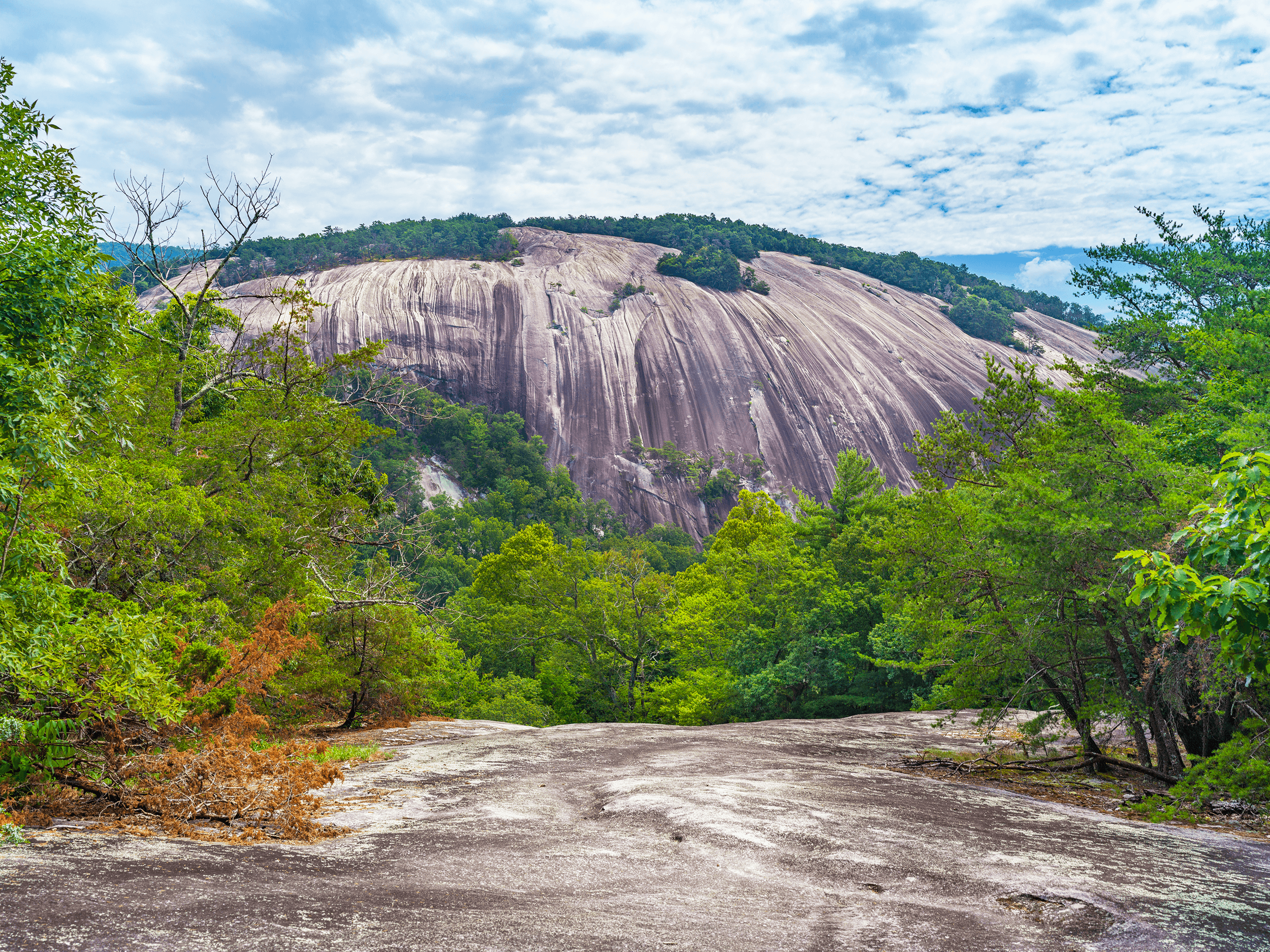 From  Cedar Rock , you have an incredible view of  Stone Mountain , and if you hiked the  Stone Mountain Loop Trail , you would appreciate what you have accomplished.
