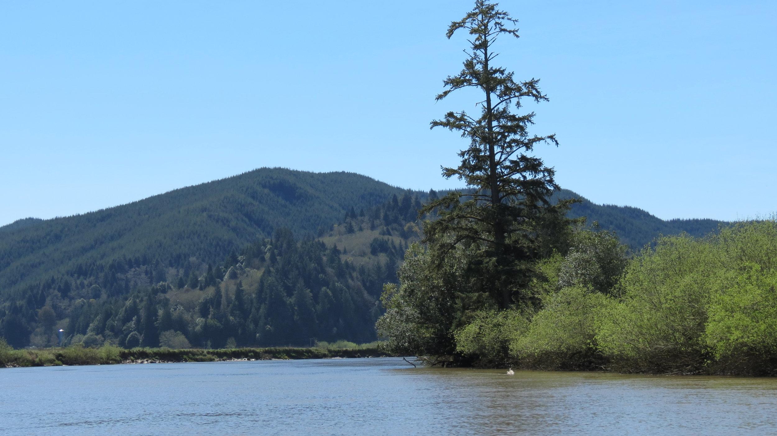 Lampa Creek Area