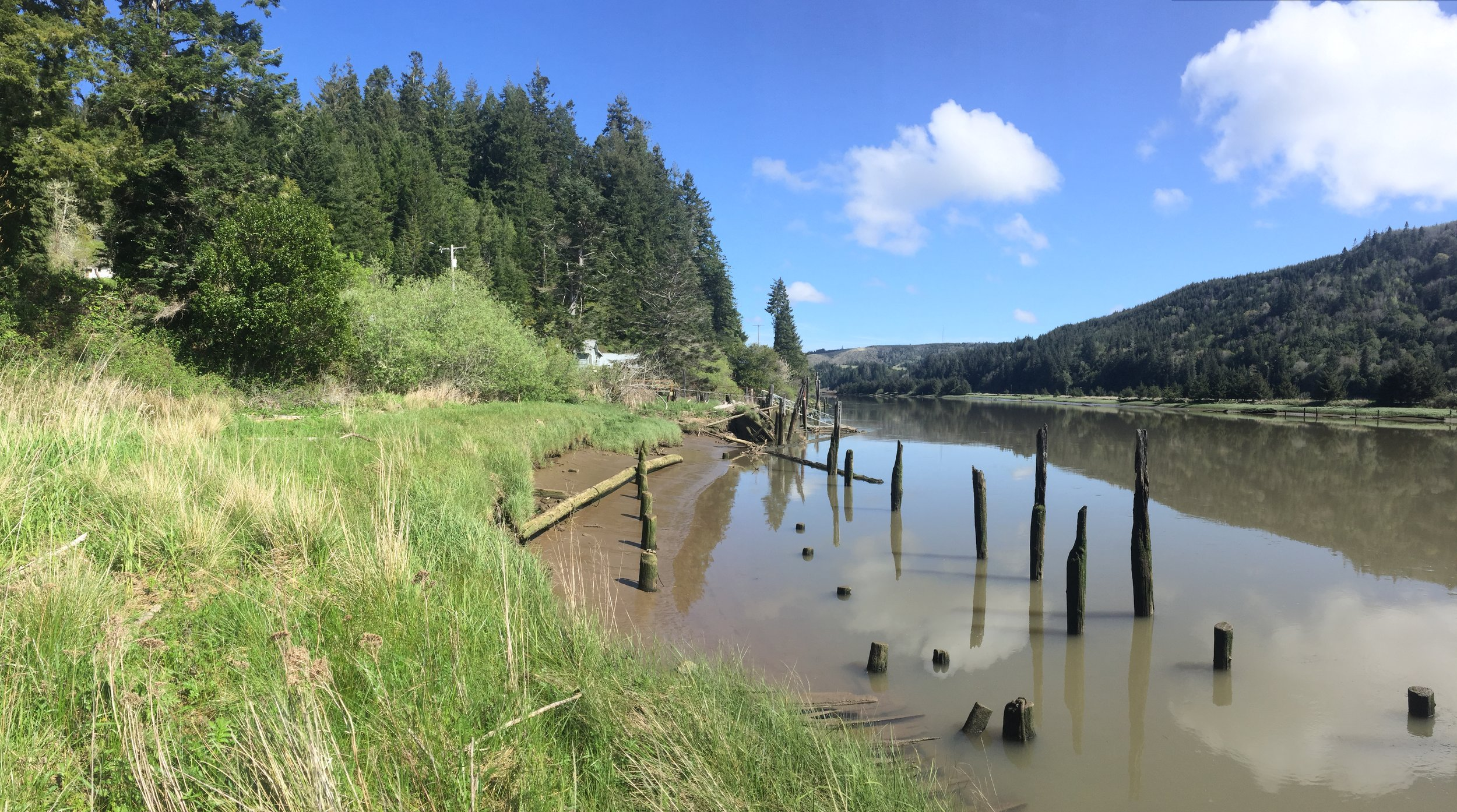 Remnants of the old boardwalk that lined the Coquille River