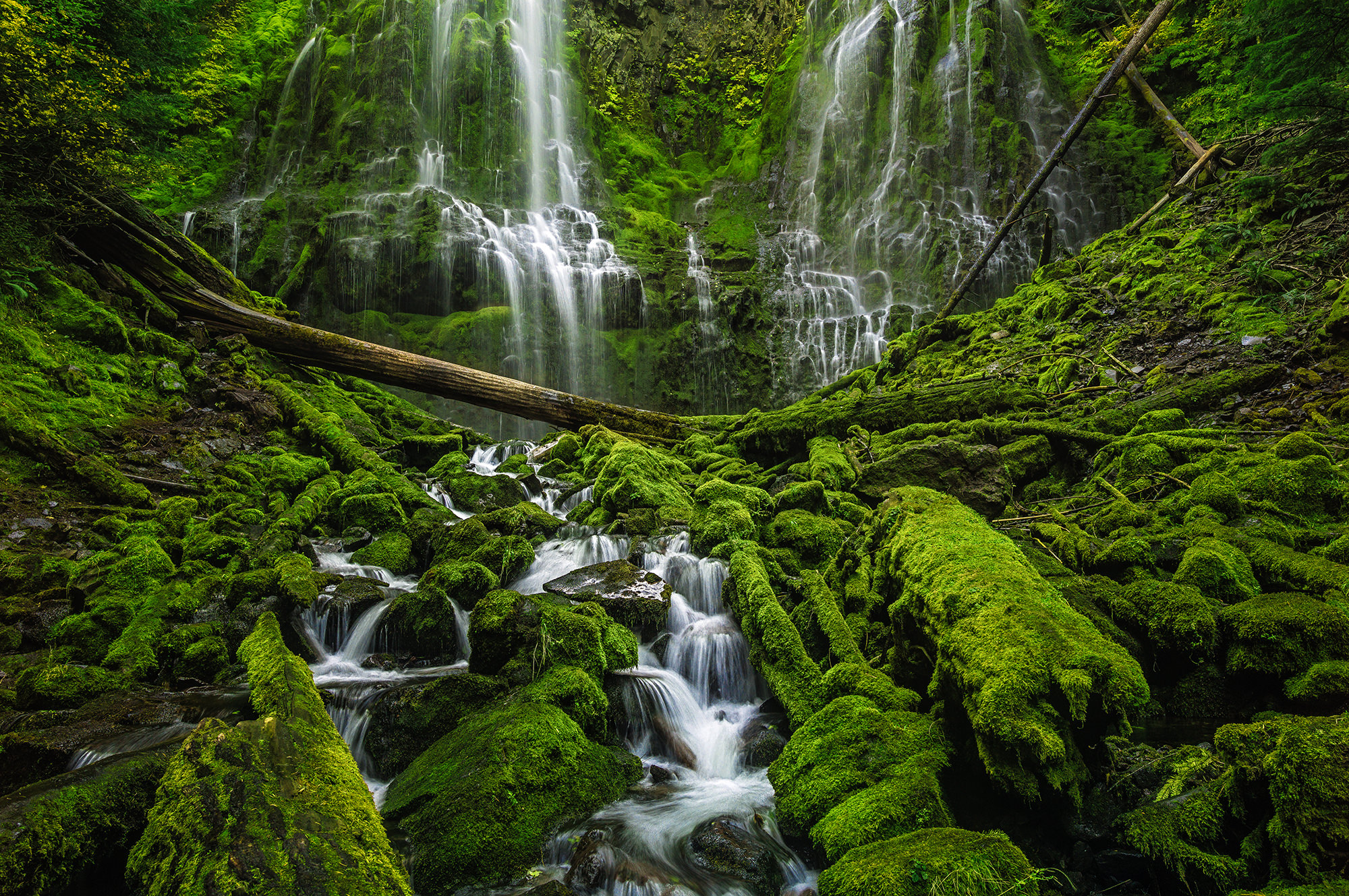 Proxy Falls - Three Sisters Wilderness, OR