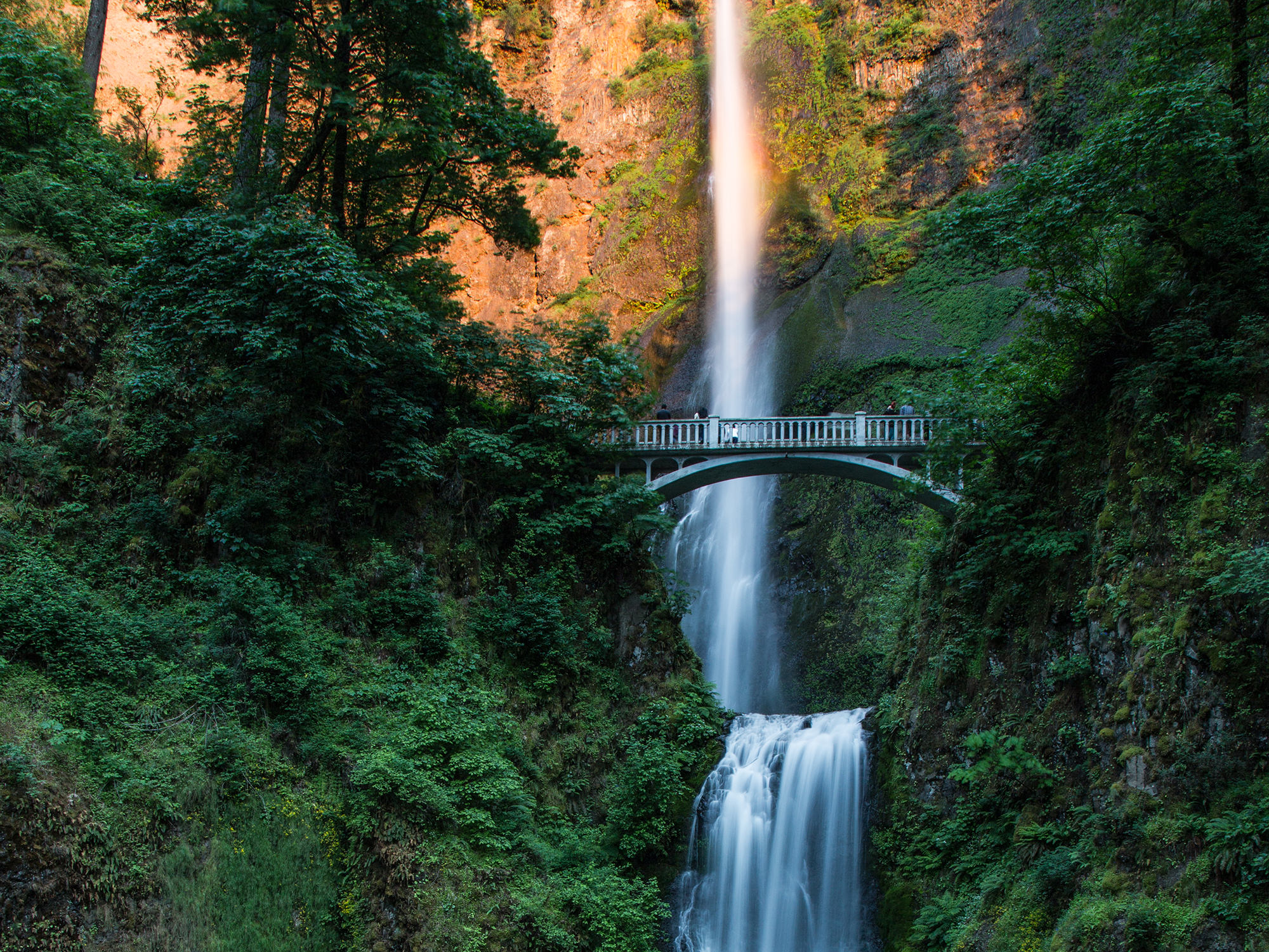 Multnomah Falls - Columbia Gorge, OR