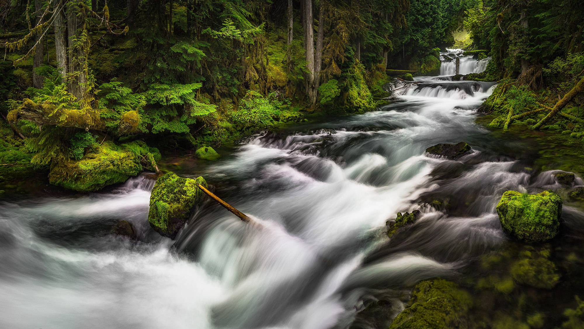 Sahalie Falls - Three Sisters Wilderness, OR