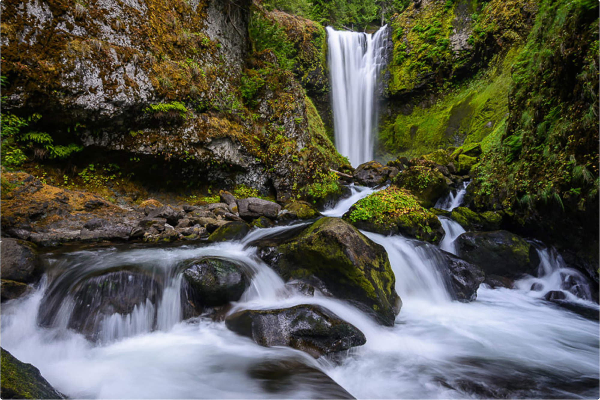Falls Creek Falls - South Central Washington