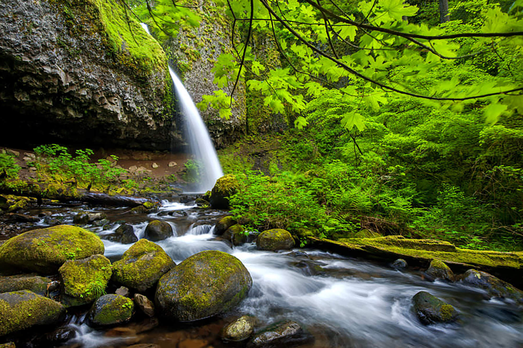 Ponytail Falls - Columbia Gorge, OR