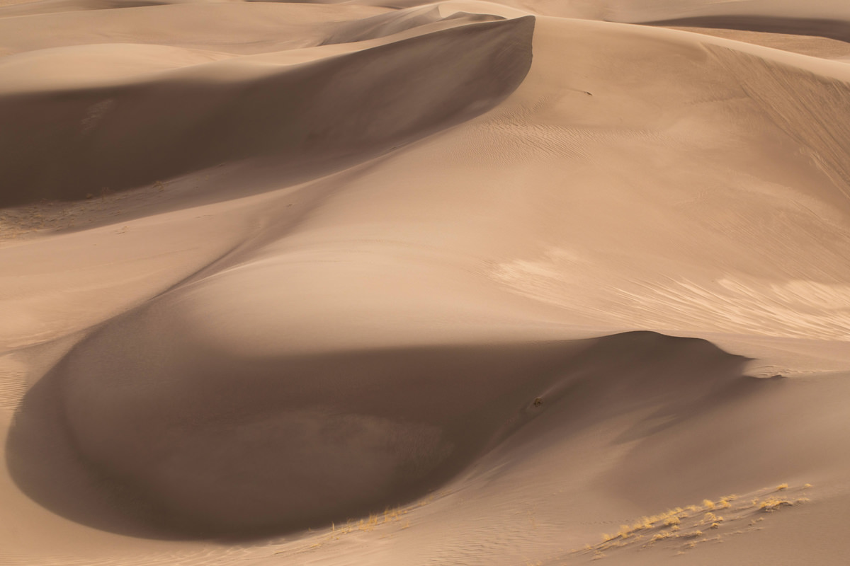 Shot from one of the highest dunes