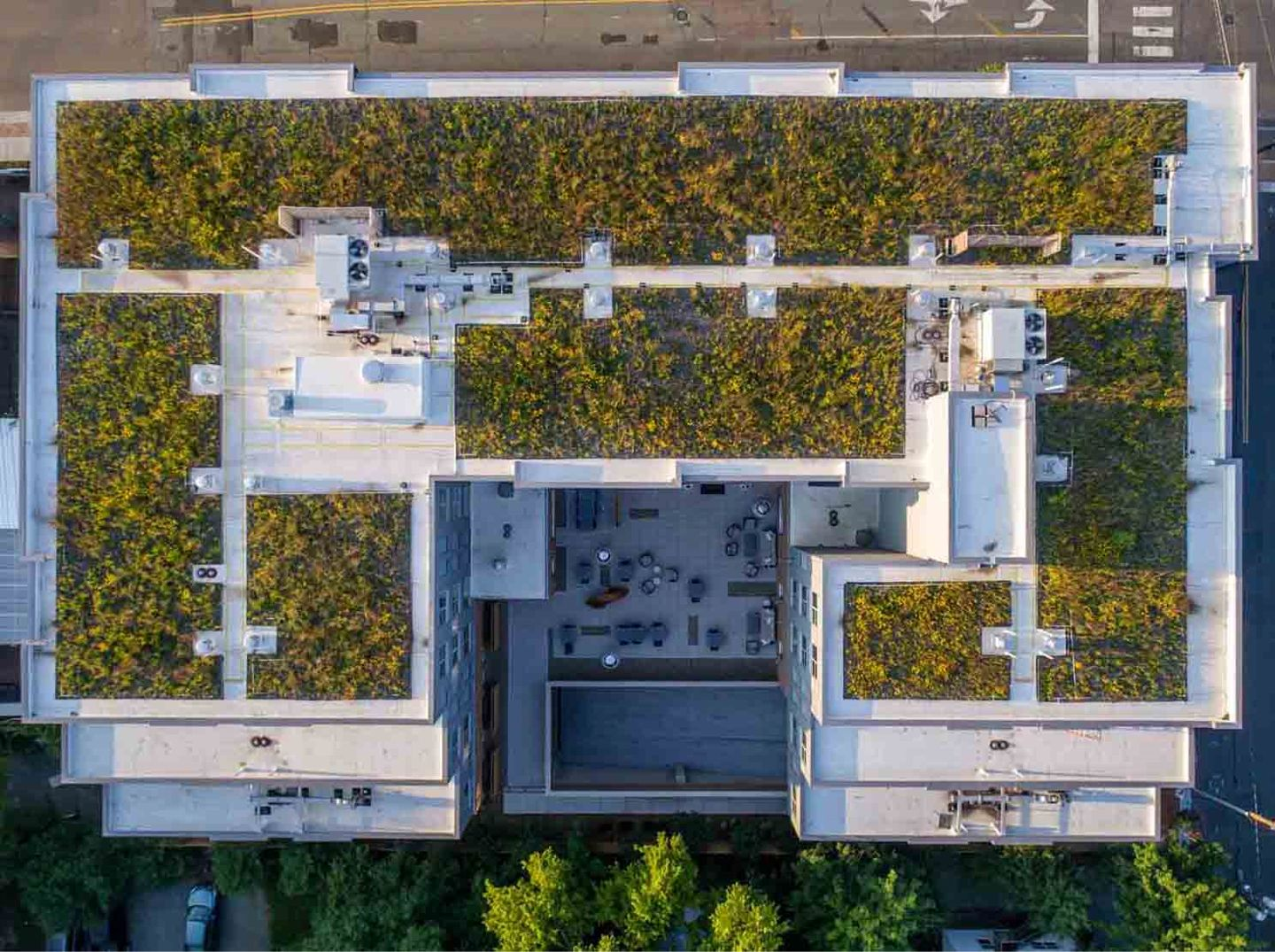 Green Roof 4 (env).jpg