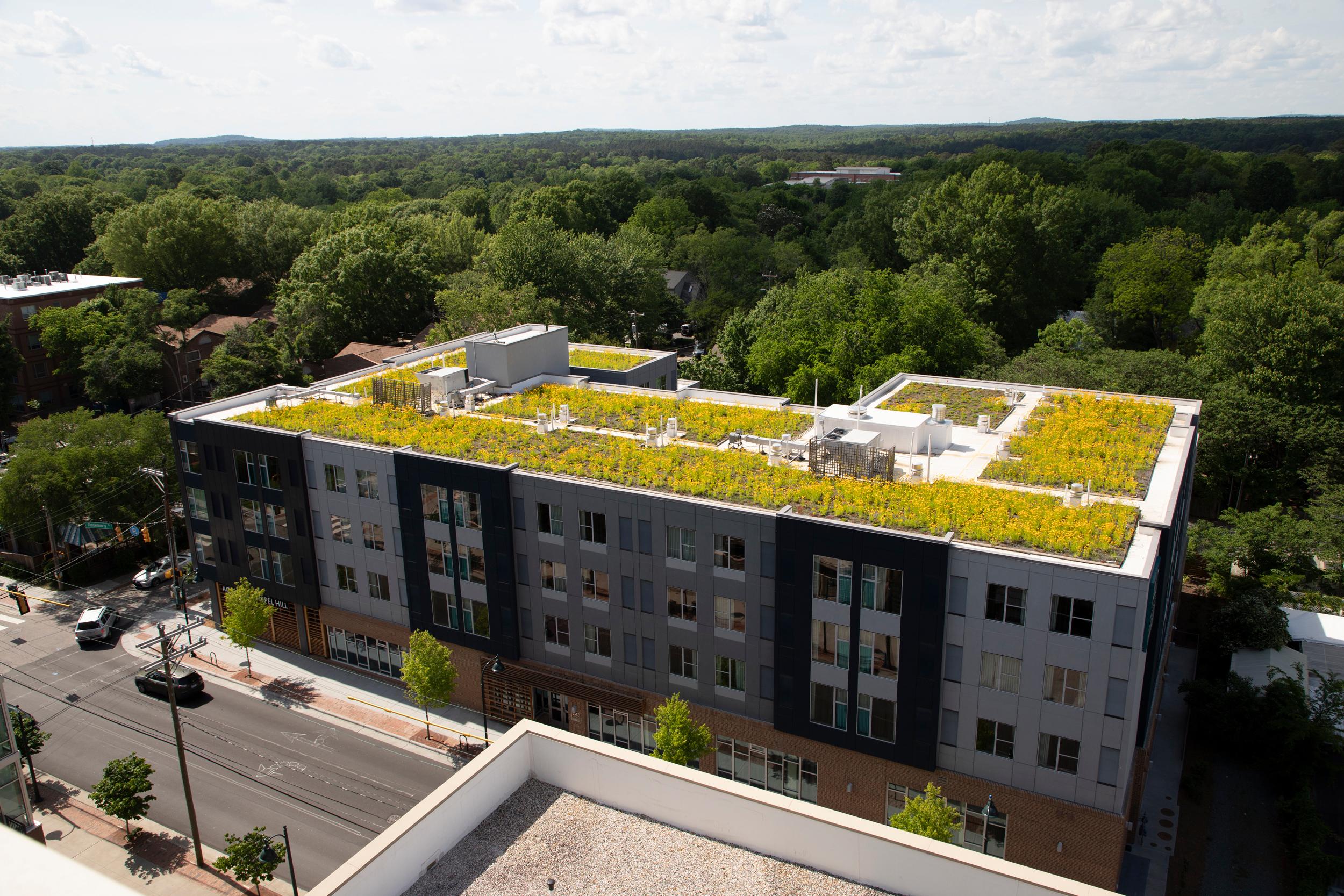 Environmental Sustainability -