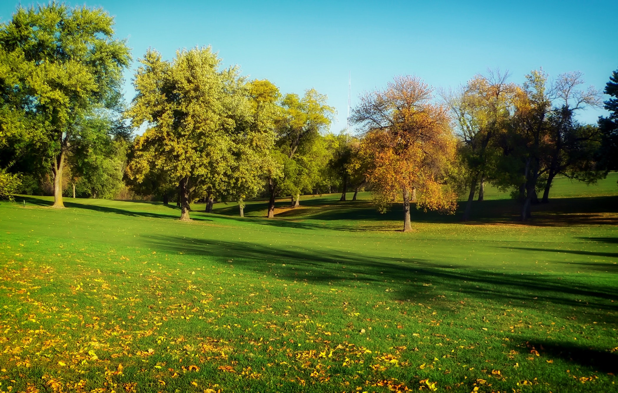 autumn-fall-golf-2336.jpg