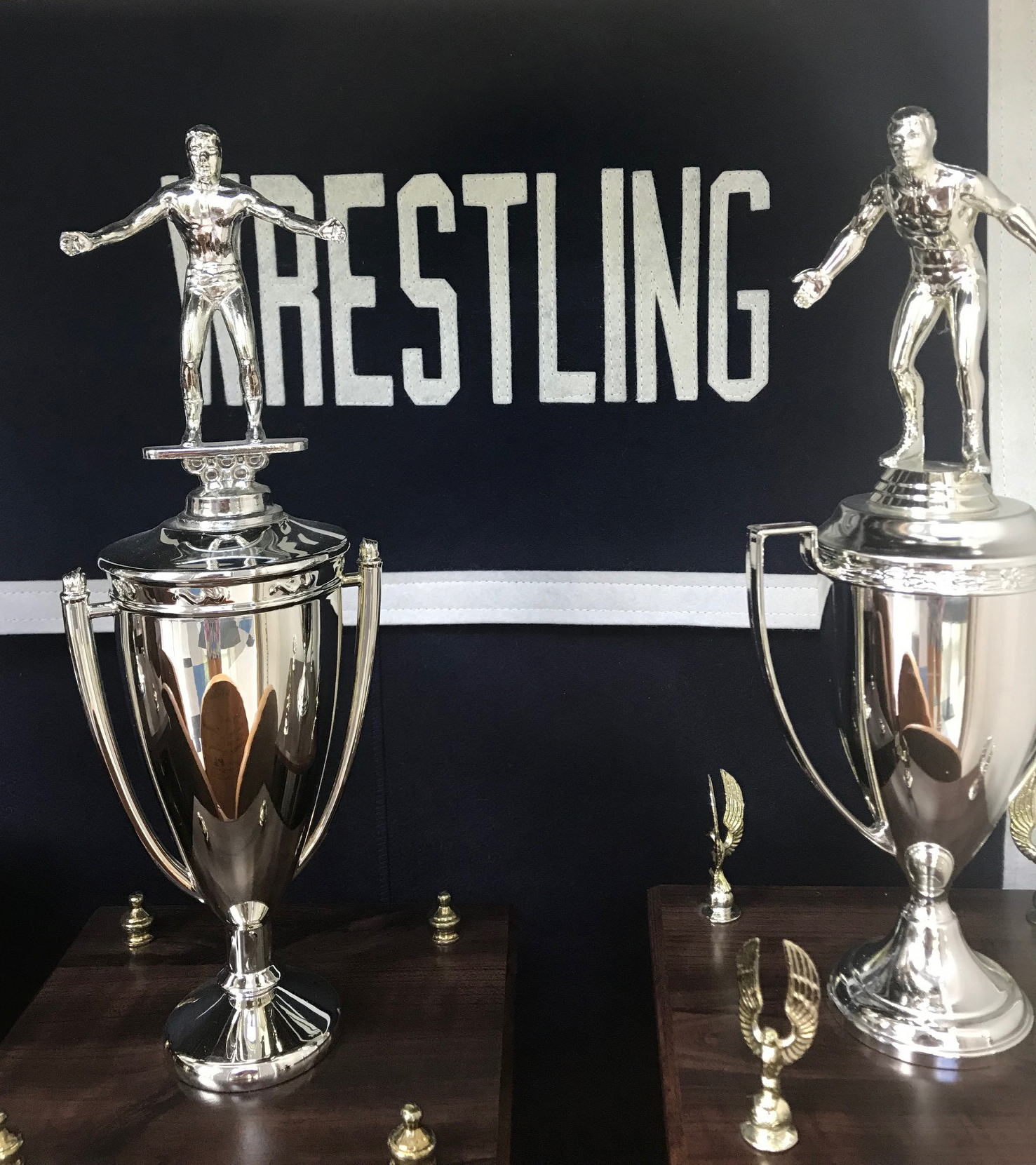 Wrestling trophy case
