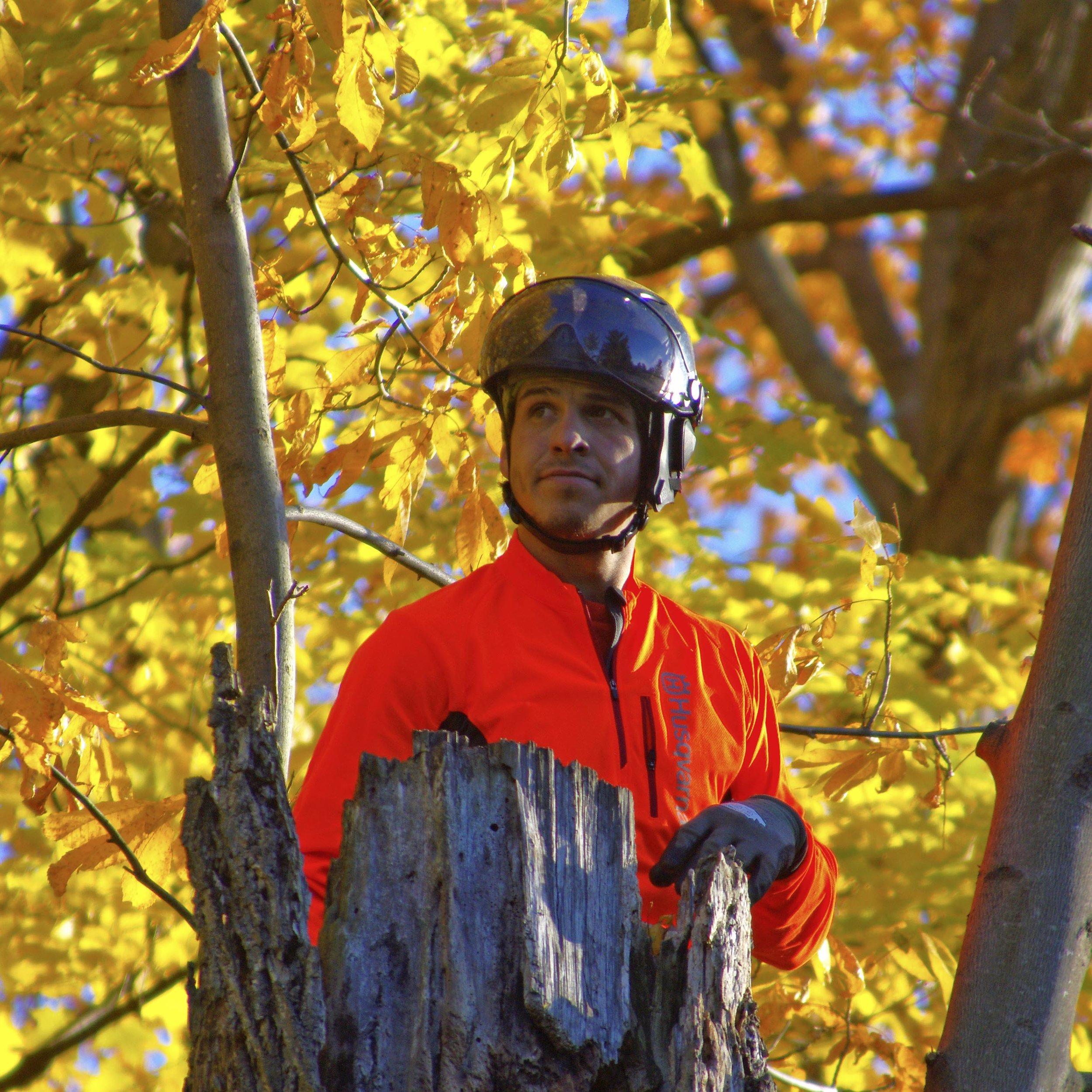 Guillaume, arboriculteur-élagueur - 8 années d'expérience dans le domaine. Formation: DEP en arboriculture-élagage au Centre de formation horticole de Laval