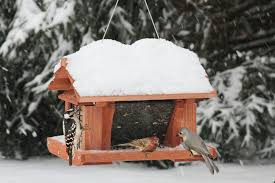 Hopper Feeder with suet cage on sides  Larger birds and smaller birds have plenty of room